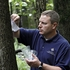 Lake County uses wasps to combat emerald ash borer
