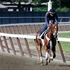I�ll Have Another ready for Belmont Stakes