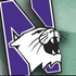 Northwestern adds 19 in signing class