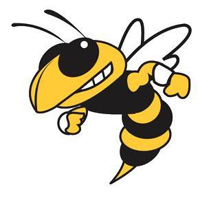 Hinsdale South Hornets