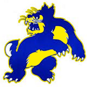 Wheeling Wildcats