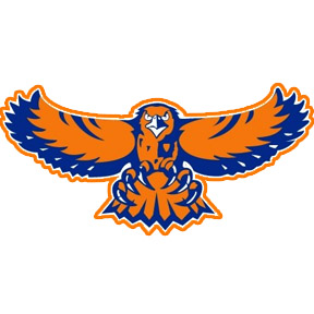 Hoffman Estates Football