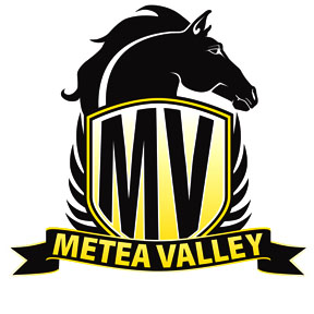 Metea Valley Mustangs