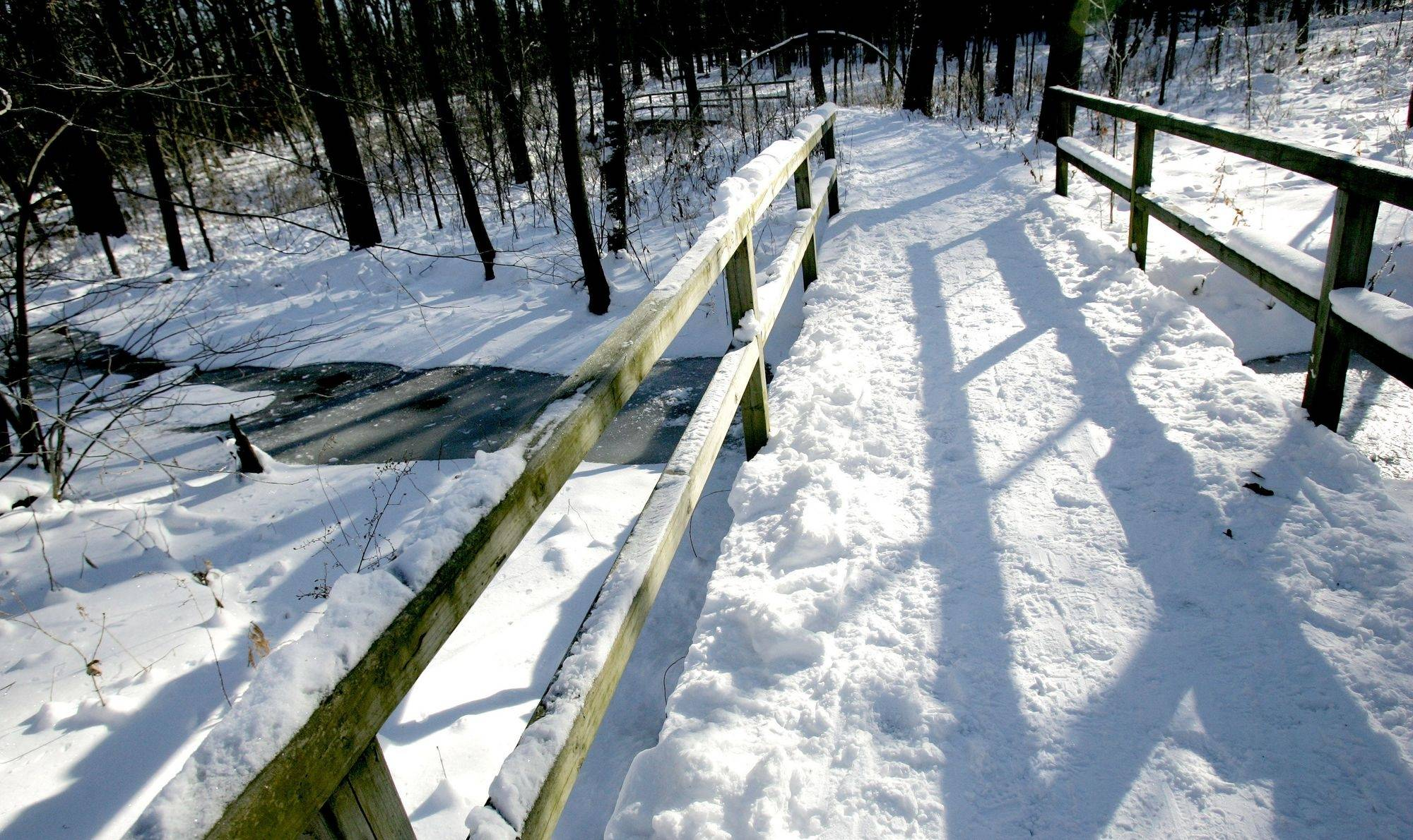 Like those at DuPage County's forest preserves, the trails at Morton Arboretum beckon cross-country skiers and even cold-weather runners.