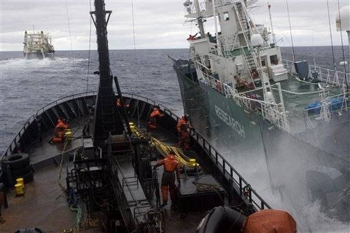 The  anti-whaling group Sea Shepherd's ship the Bob Barker, left, and Japanese harpoon boat the Yushin Maru 3 collide in the waters off Antarctica Saturday.
