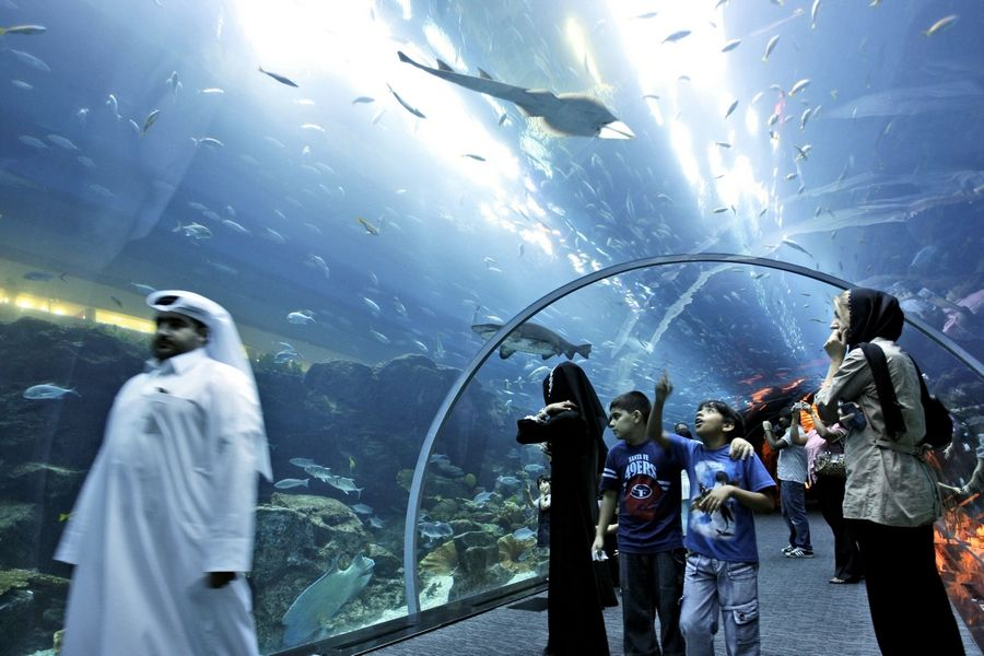 Shark-filled aquarium in Dubai mall springs leak