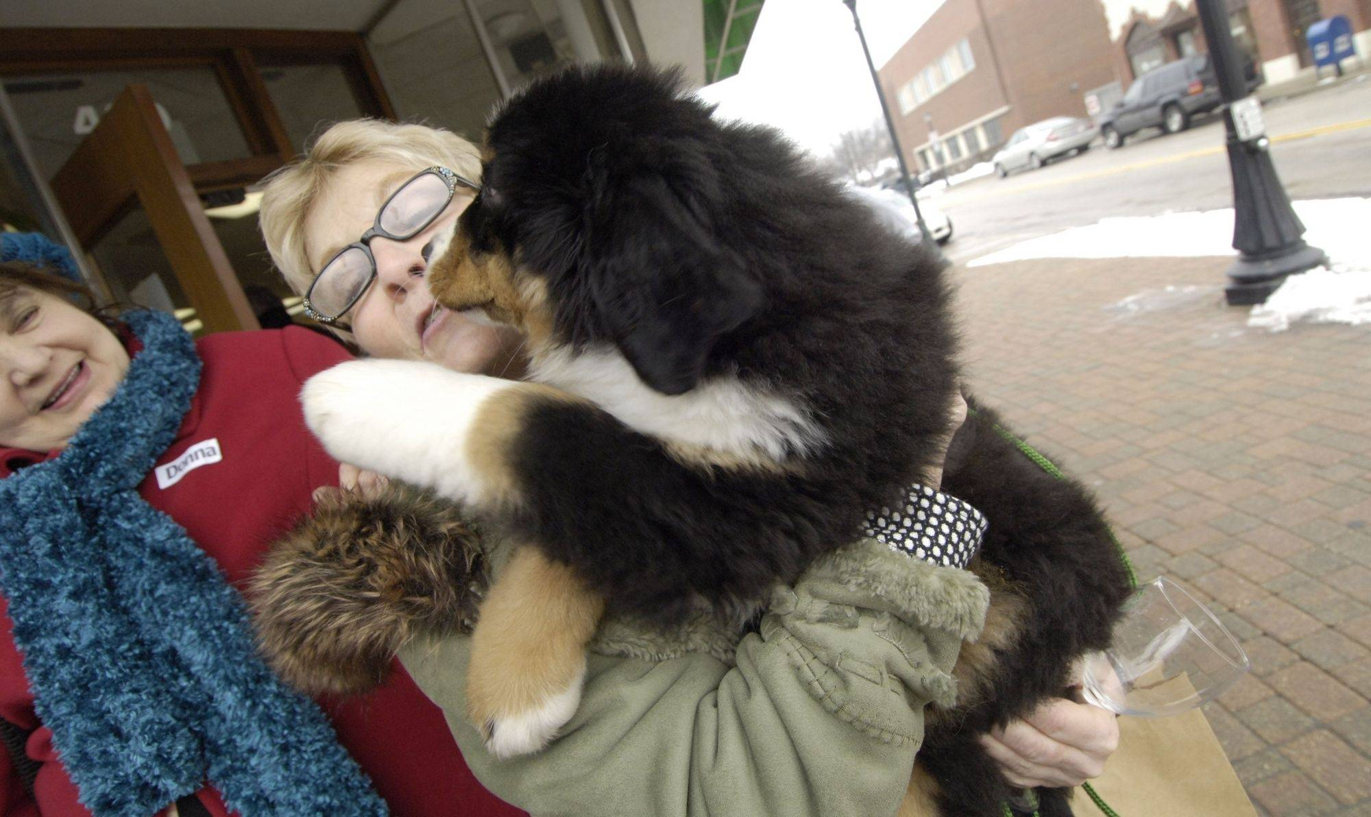 Linda Malinowski of Gurnee visits with Danko, a Burnese mountain dog, during Saturday's wine tasting at stores along Milwaukee Avenue in downtown Libertyville.