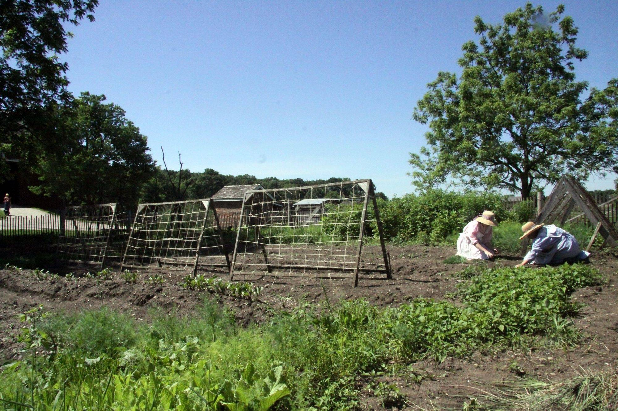 Kline Creek Farm staffers Rebekah Carlton and Sara Ivetic work in the garden at the DuPage County Forest Preserve's living-history farm in West Chicago. Winfield officials want to have the farm's address changed.