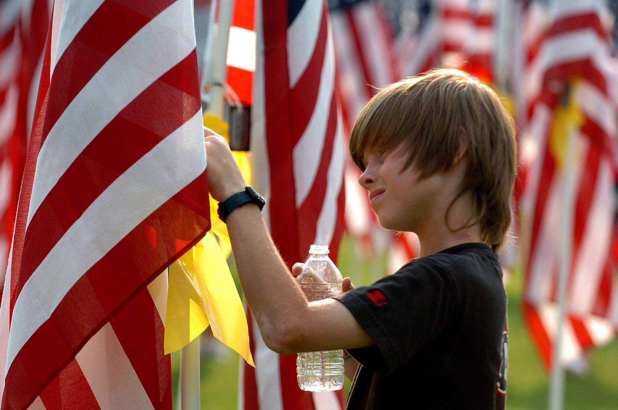 10-year-old Colin Mcquillen from Carpentersville looks at the flags in Carpenter Park during Healing Field: Welcome Home Tribute to Our Vietnam Veterans parade Sunday.