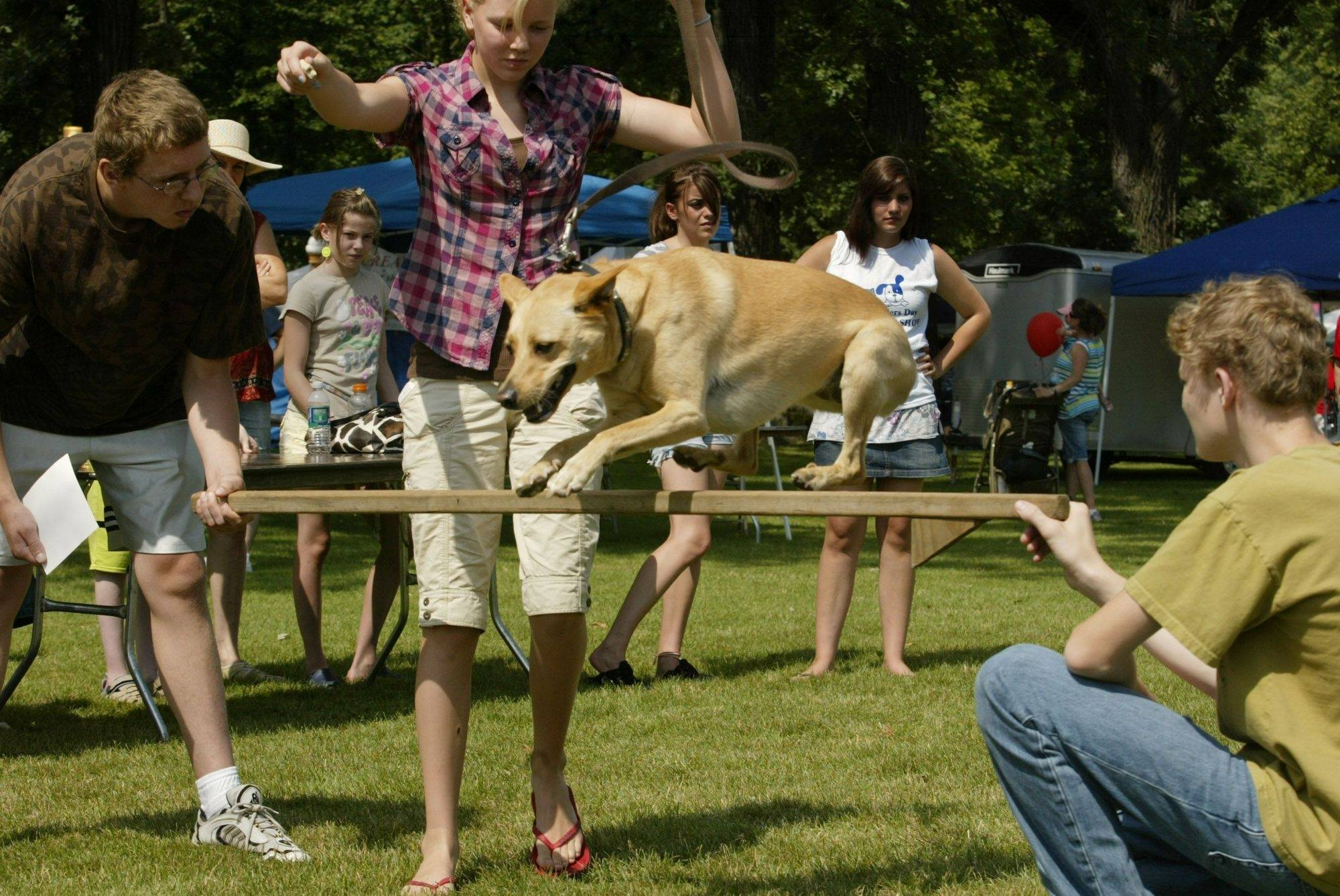 Lydia Auch of Algonquin convinces her dog Kiwi, a 5-year-old whippet-lab mix, to jump an obstacle held by her brother Nathan, right and cousin Tim Nixon at last year's Algonquin Founders' Days. Kiwi's attempt earned him first place for best dog trick.