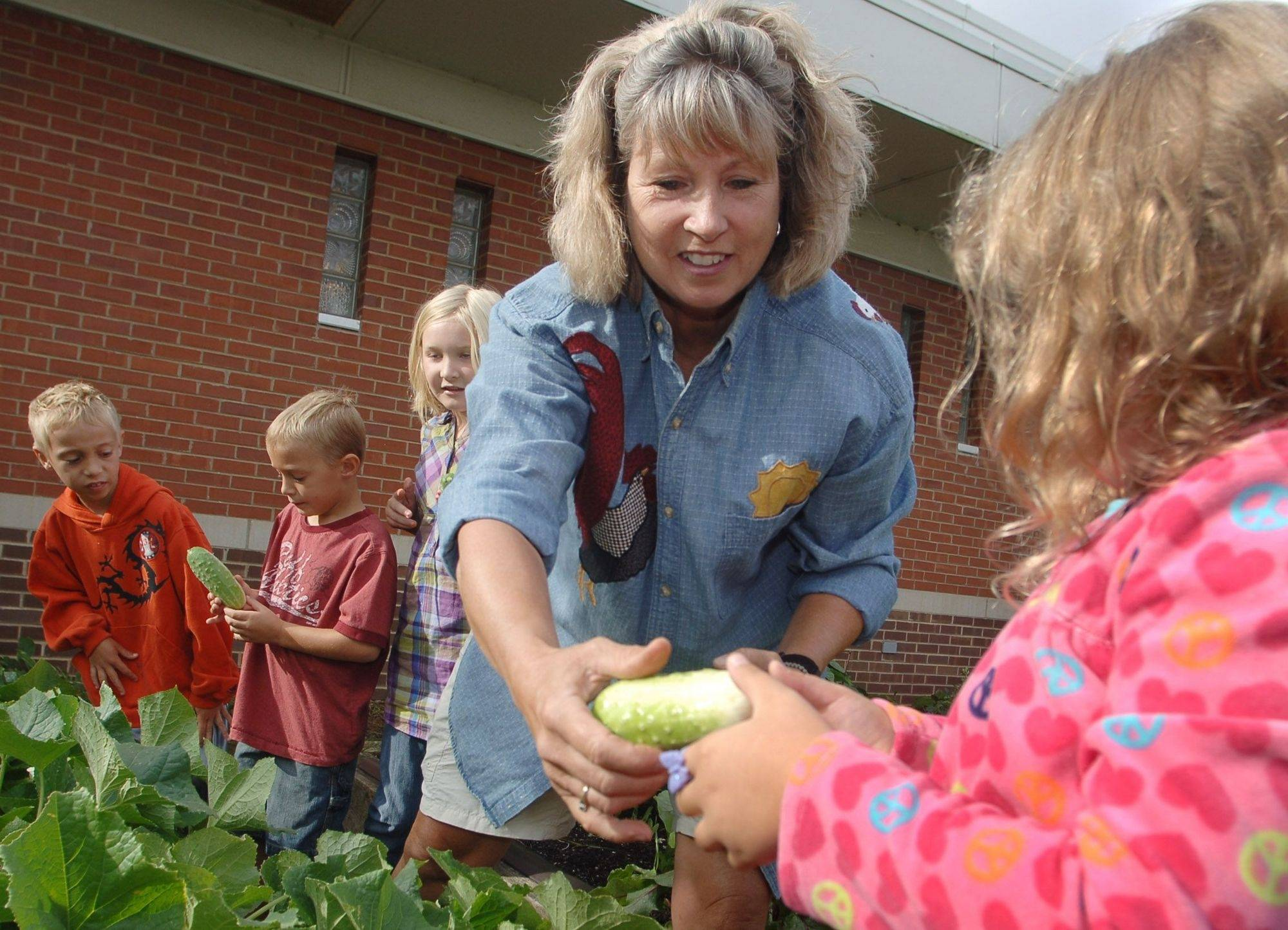 Kathy Reilly helps students pick cucumbers from one of the two courtyard gardens at Fremont Elementary School in Mundelein. Reilly heads up the garden program, which was developed through the Dist. 79 health and wellness committee.