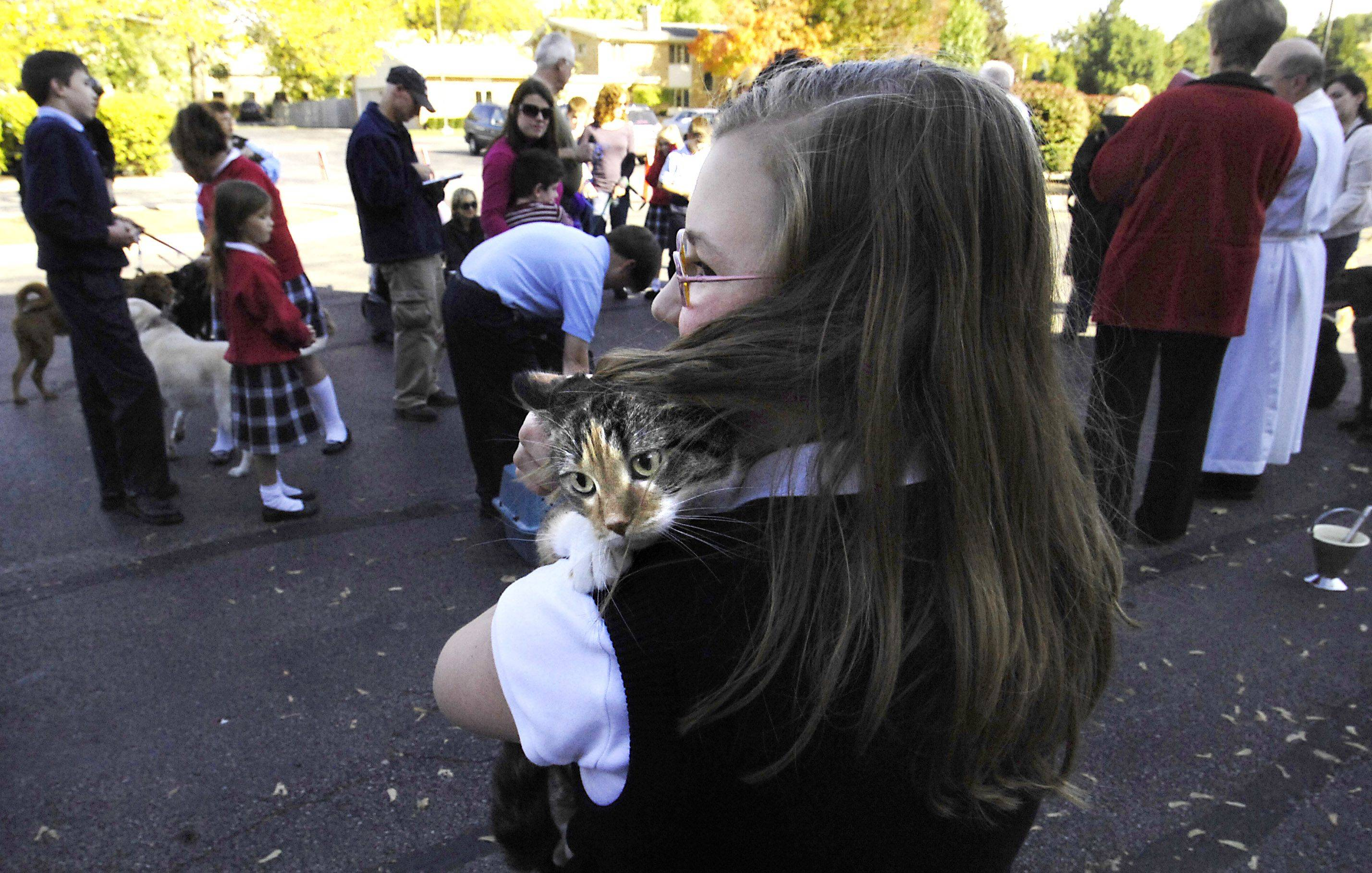 Jill Danklefsen's three-year-old cat, Libby, clings to the thirteen-year-olds shoulder as Fr. Dennis Morrissy conducts a pet blessing Monday at St. Peter Church in Geneva. The blessing celebrated the Feast Day of St. Francis of Assisi. Jill is from Geneva and is a St. Peter member.