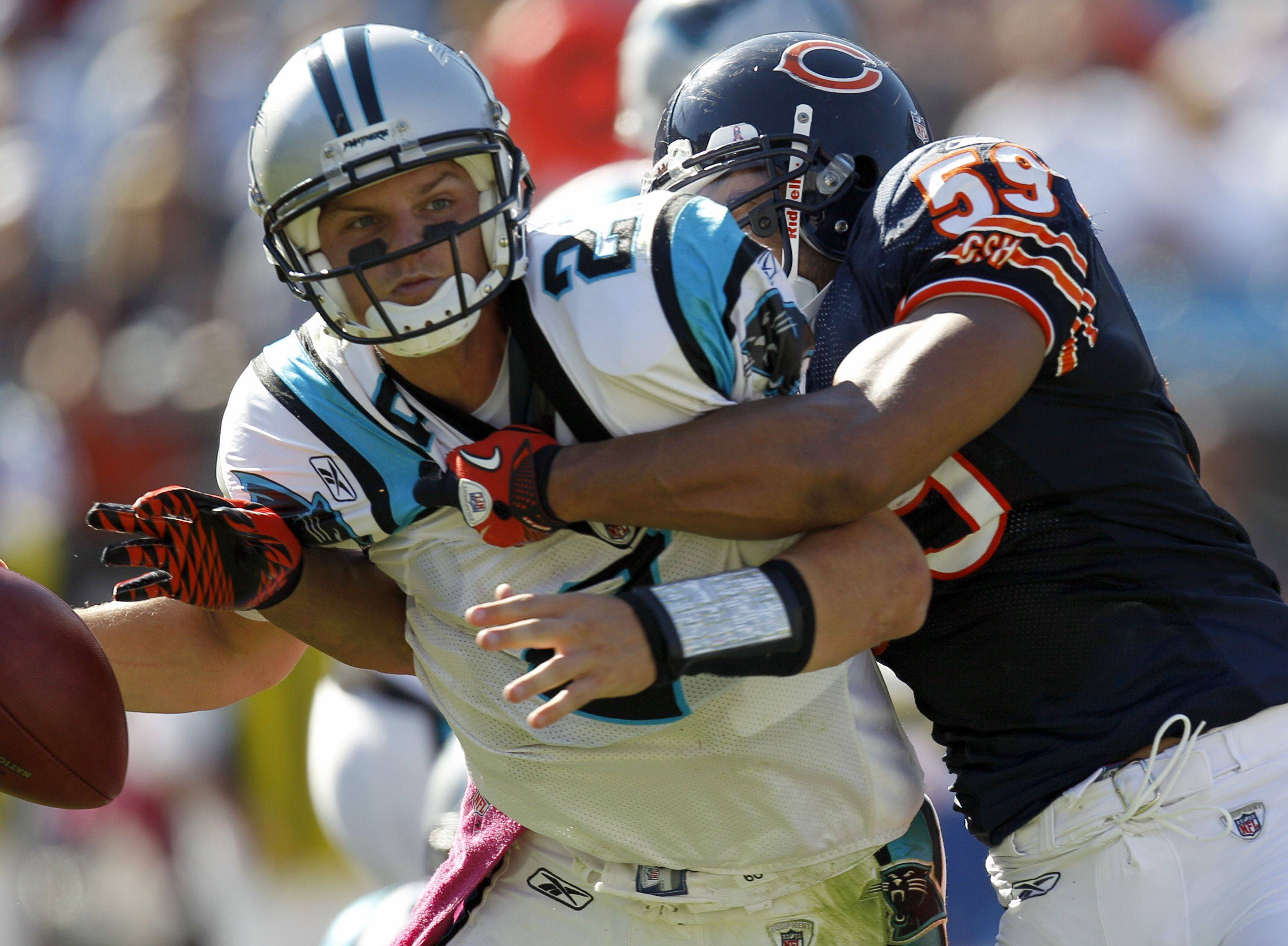 Carolina Panthers quarterback Jimmy Clausen is sacked by Chicago Bears linebacker Pisa Tinoisamoa in the second half.