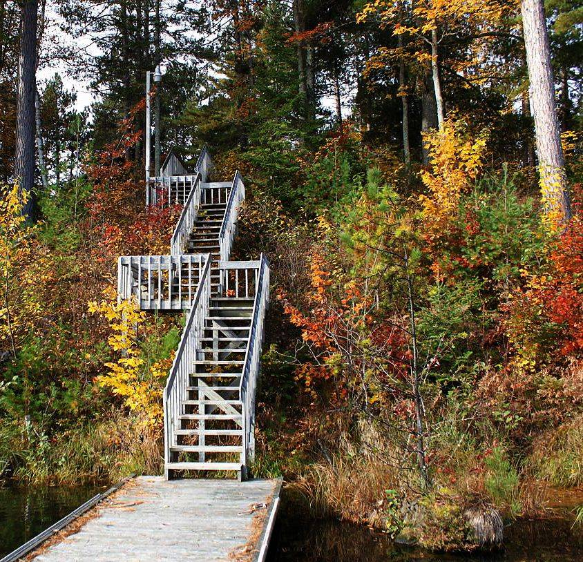 Stairs at Land O'Lakes, WI surrounded by fall colors.