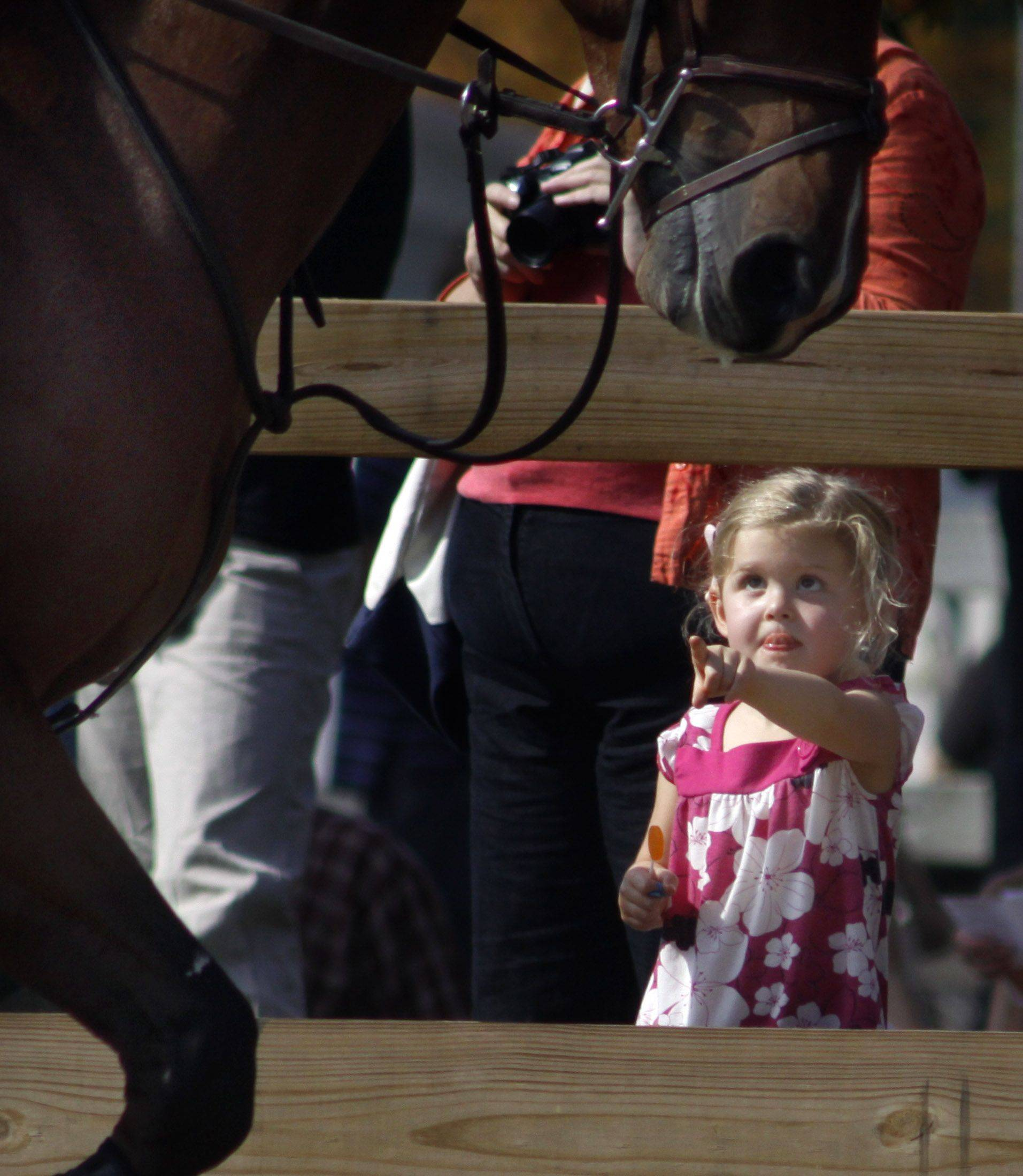 Across the field a little girl points at a horse during the horse jumping that took place in the main arena at the Danada Fall Festival Sunday at Danada Equestrian Center.
