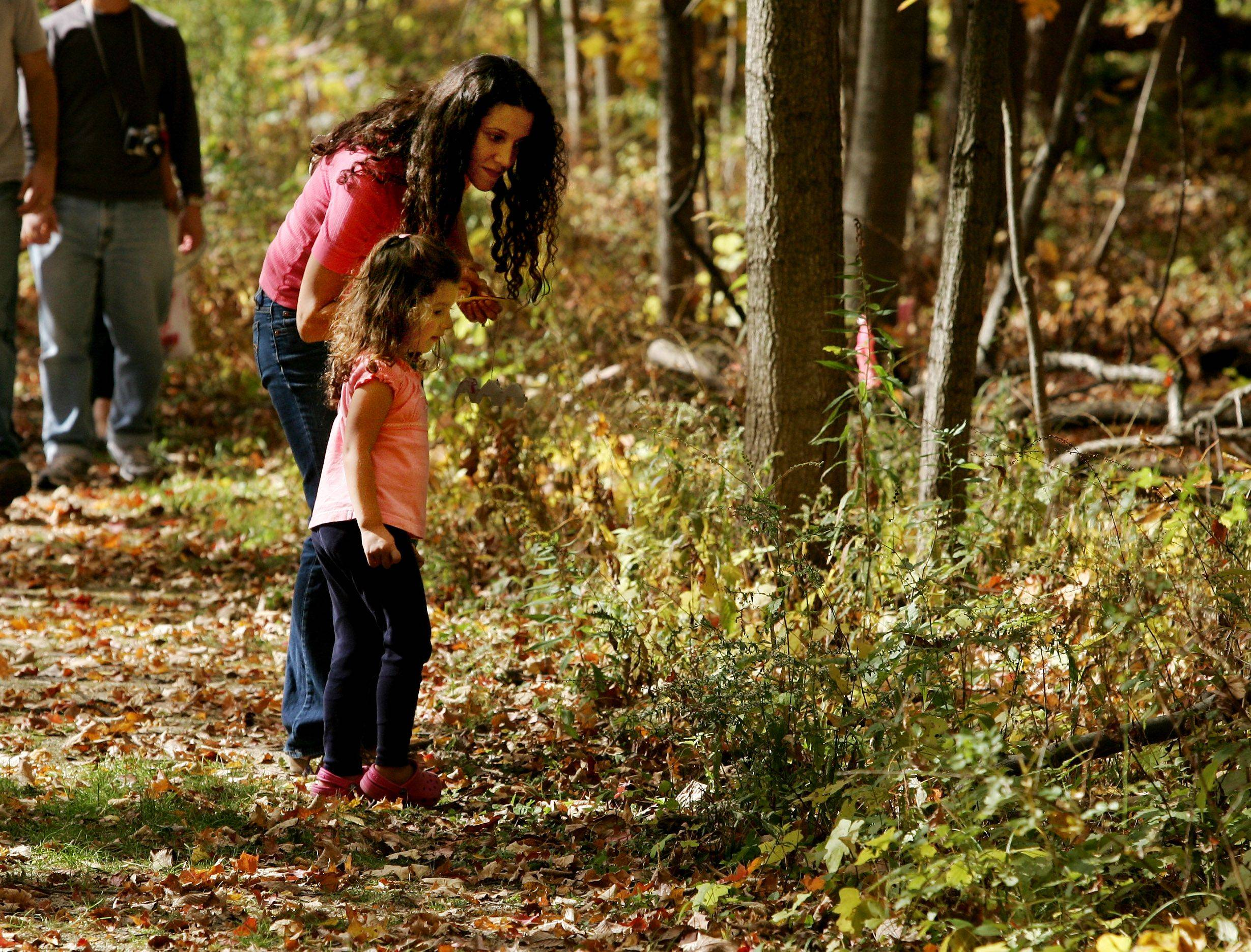 Angela Berzanski of Lake Forest and her daughter Brianna, 4, look at the fall leaves during a nature hike in Ryerson Woods during the Lake County Forest Preserve Fall Festival Sunday in Riverwoods.