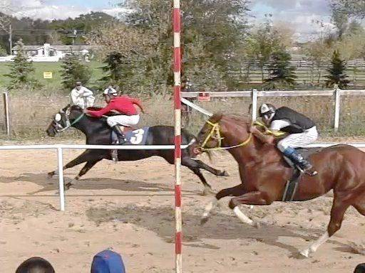 Neighbors upset with horse races at McHenry County farm