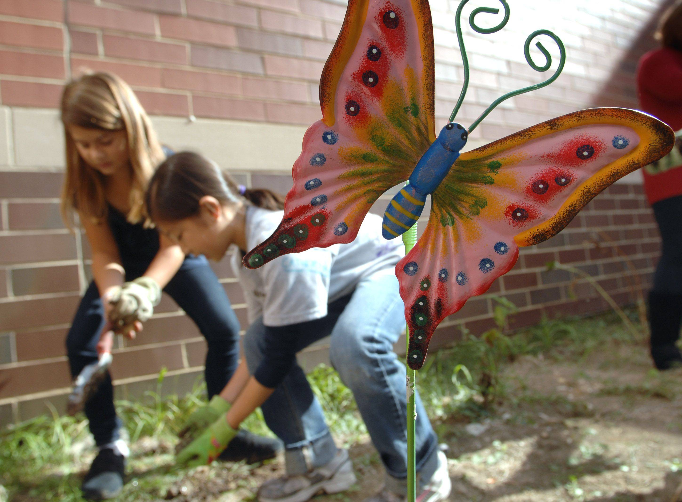 Fifty students at Fremont Intermediate School planted 250 tulip bulbs in the school's butterfly garden. Students Jenna Yefsky, left, and Amelia Lee dig holes for the bulbs Monday.