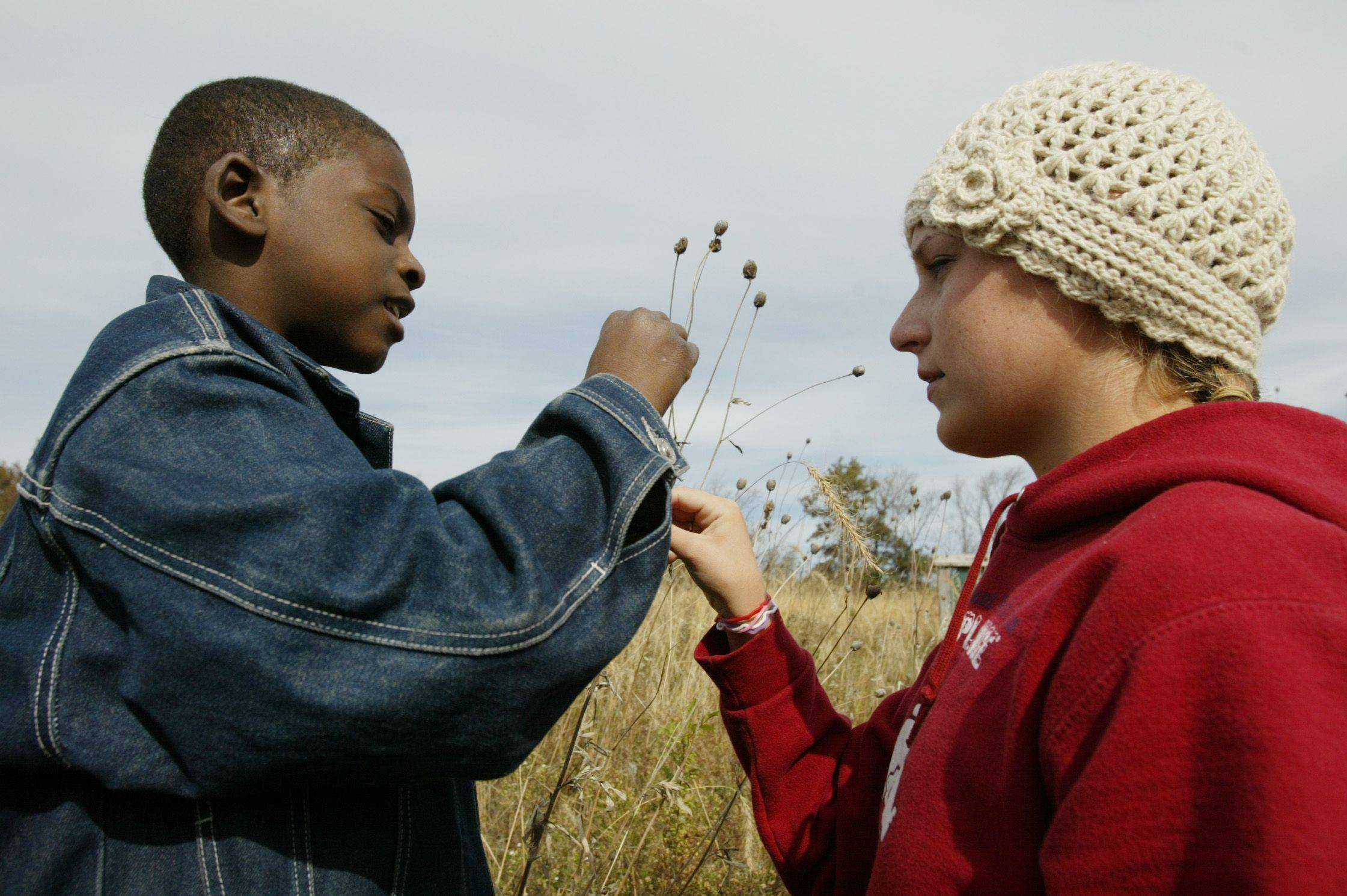Dundee-Crown senior Claira Himmel shows Perry Elementary third-grader Keywan Riggins how to collect cone flower seeds Tuesday at Snuffy's Prairie in Carpentersville.