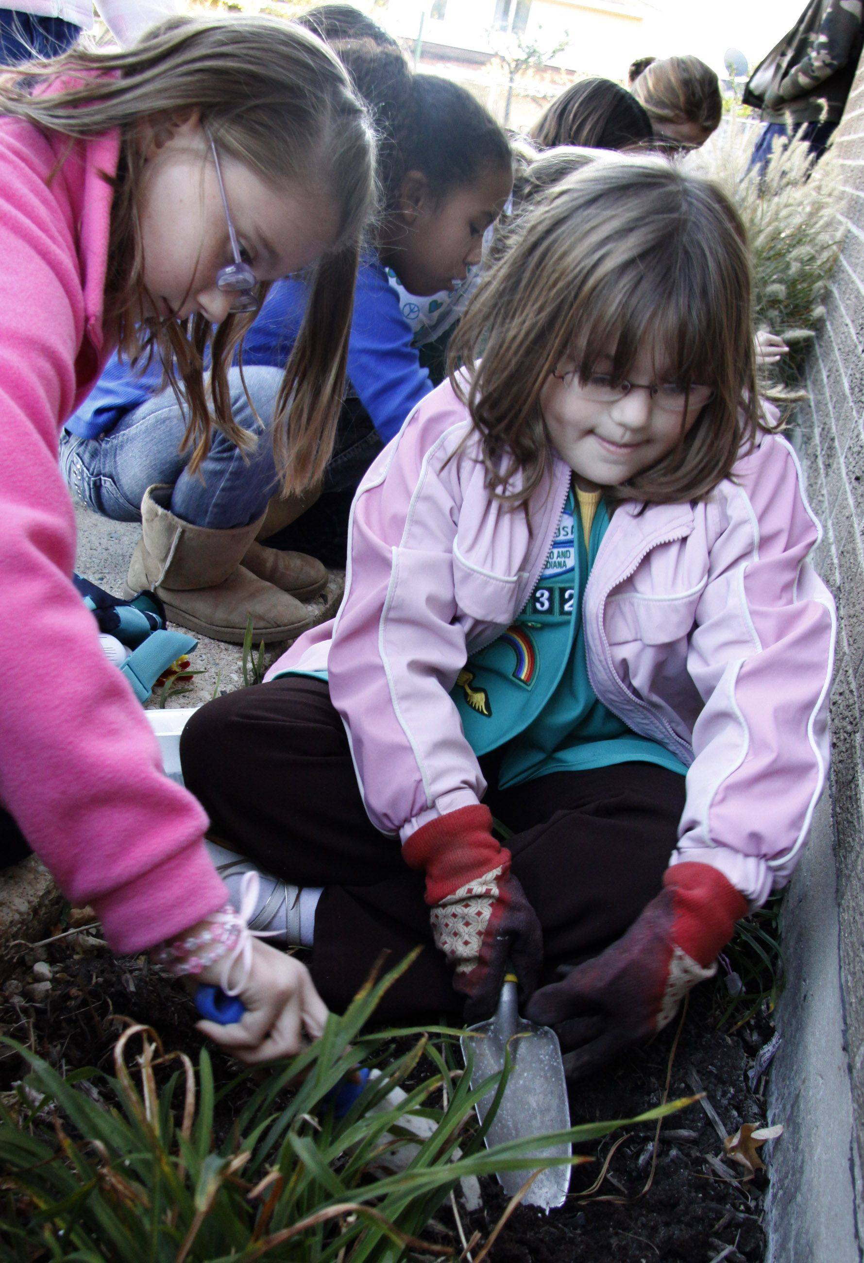 Riley Ellison, left, and Ella Walker of Girl Scout Troop 1332 from Springhill School in Roselle plant pink tulips Thursday in observance of Breast Cancer Awareness Month. The bulbs were planted in memory of Juliette Low, the founder of Girl Scouts, and to their third-grade teacher, Darlene Fraser, who passed away last year from cancer. Both girls are nine.