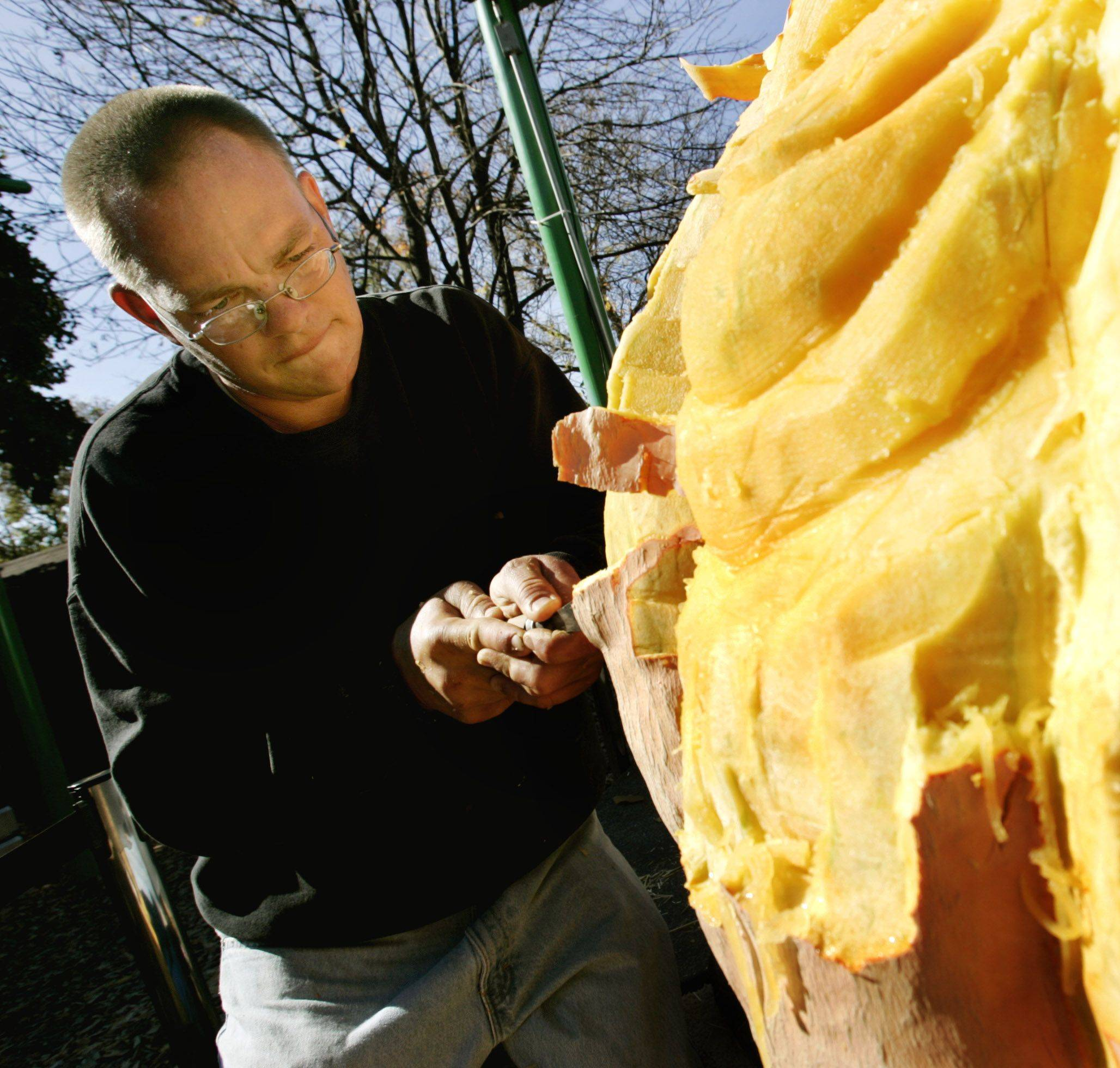 Steve Dahlke of Lombard carves a huge pumpkin Sunday at Brookfield Zoo.