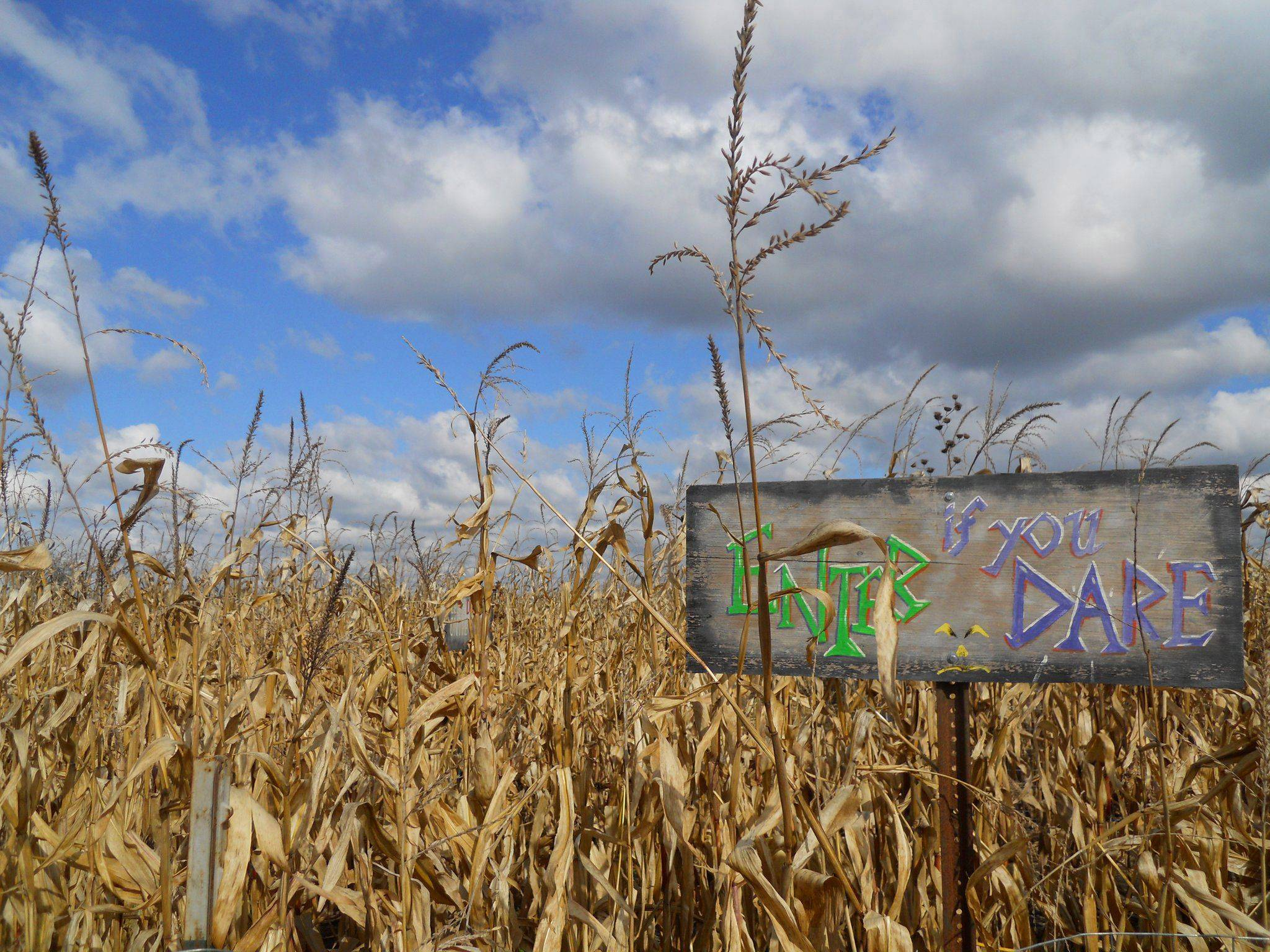 A sign tries to confuse maze dwellers in the corn maze at Didier Farms in Prairie View.