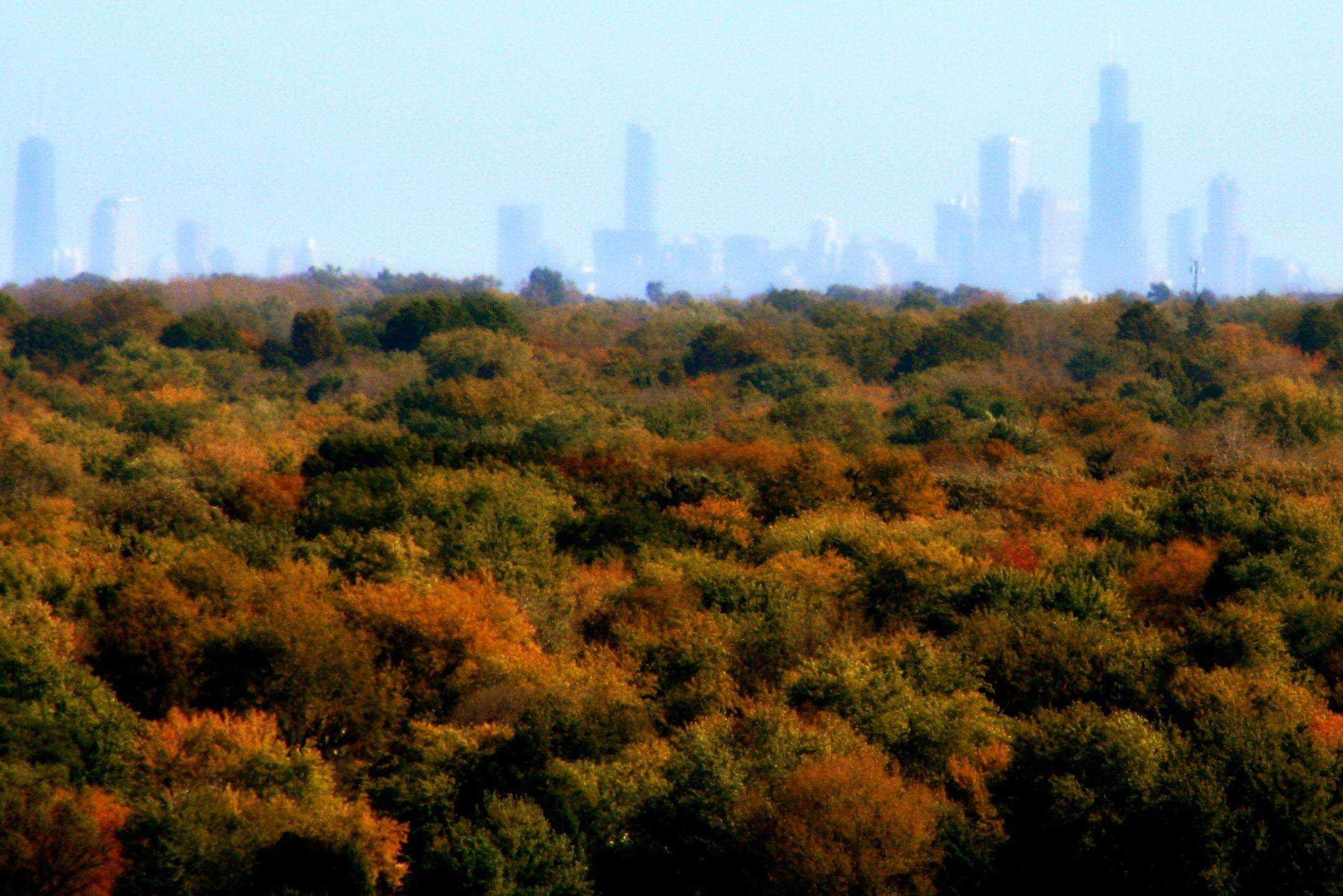 This is the Chicago skyline as viewed from Greene Valley Forest Preserve, which is a landfill, and possibly the highest spot in DuPage County.