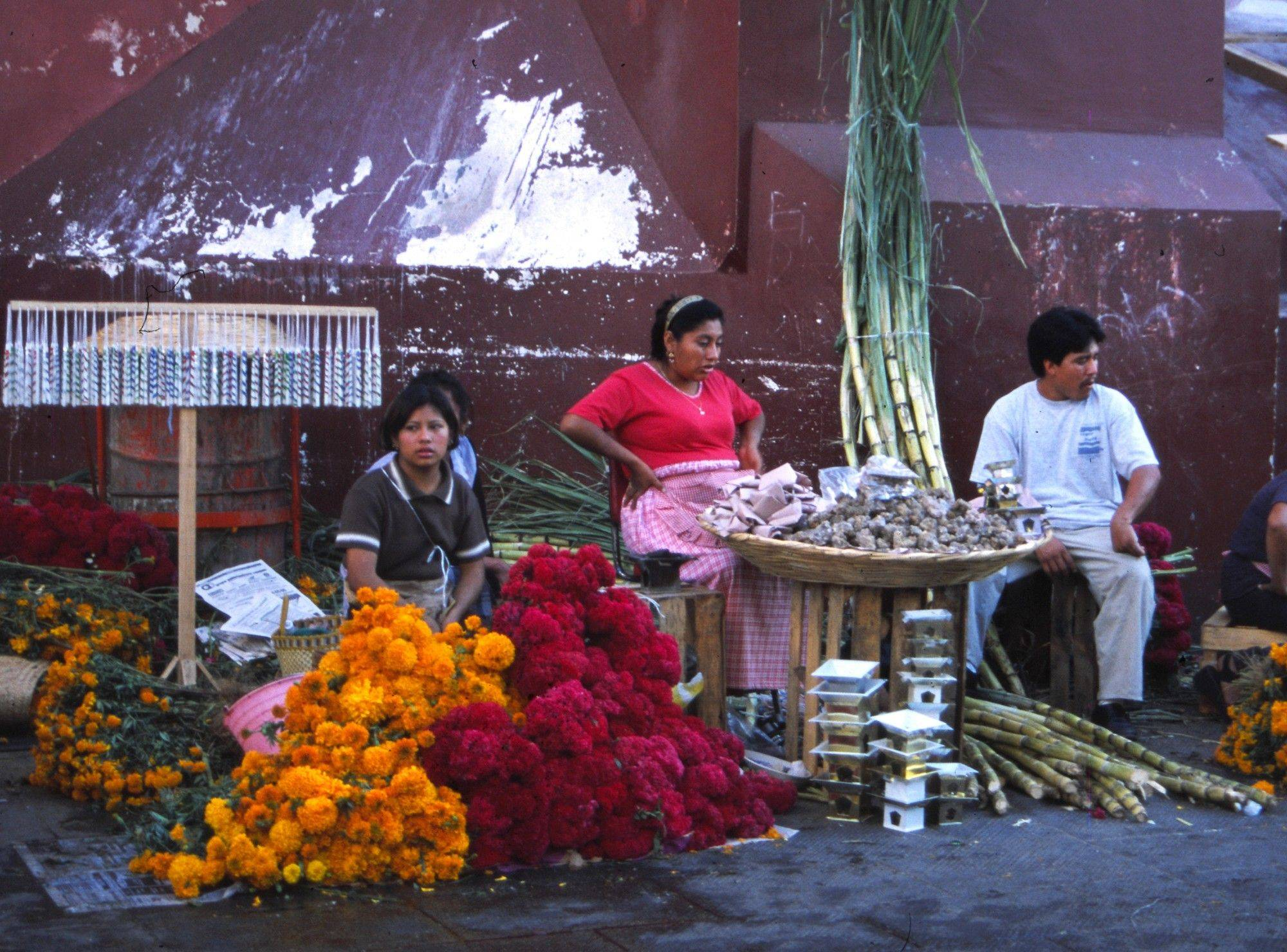 For days before a Mexican holiday known as El Dia De Los Muertos  the Day of the Dead  vendors sell marigolds, sugarcane, candles and baskets heaped with pre-Columbian tree resin incense known as copal.