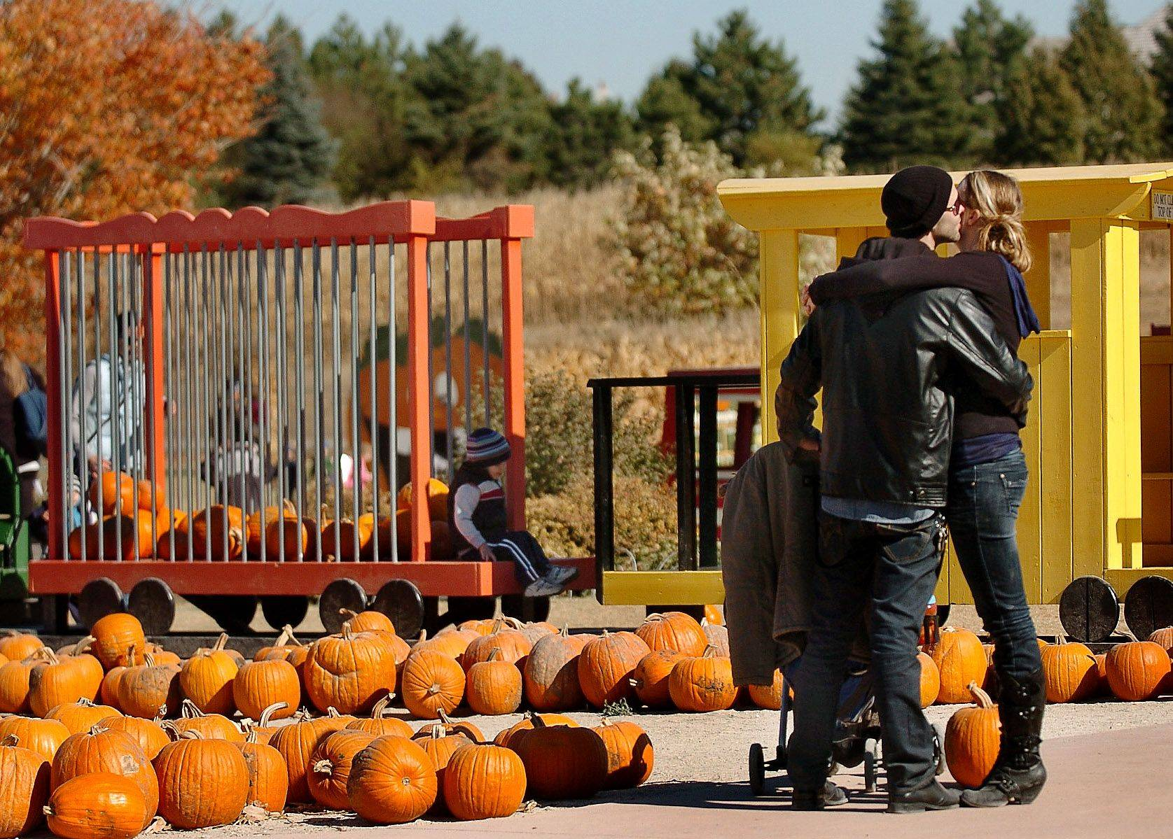 Eric and Shanna Leezer of Rockford enjoy an affectionate moment at Goebberts Pumpkin Farm in South Barrington.