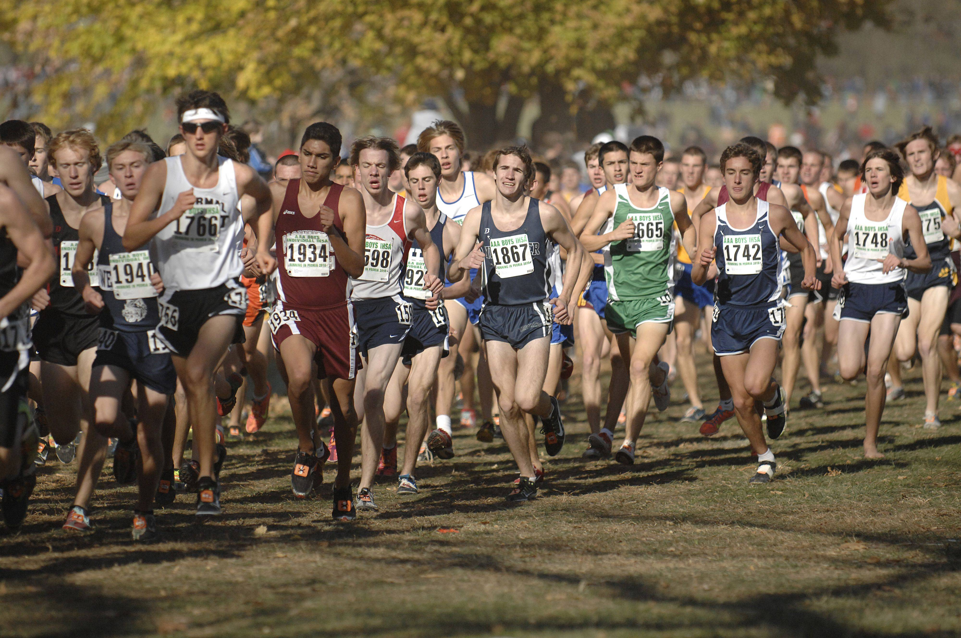 The 3A class of the state cross country meet at Detweiller Park in Peoria on Saturday, November 6.