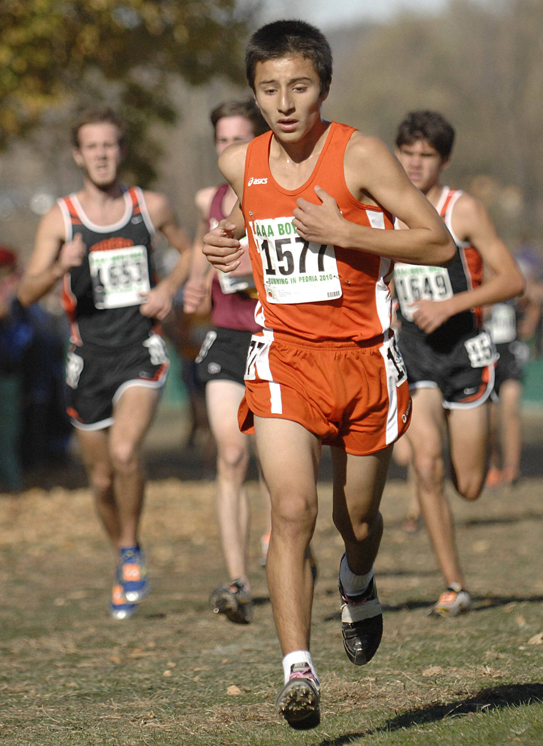 Hersey's Erick DeLoera in the 3A class of the state cross country meet at Detweiller Park in Peoria on Saturday, November 6.