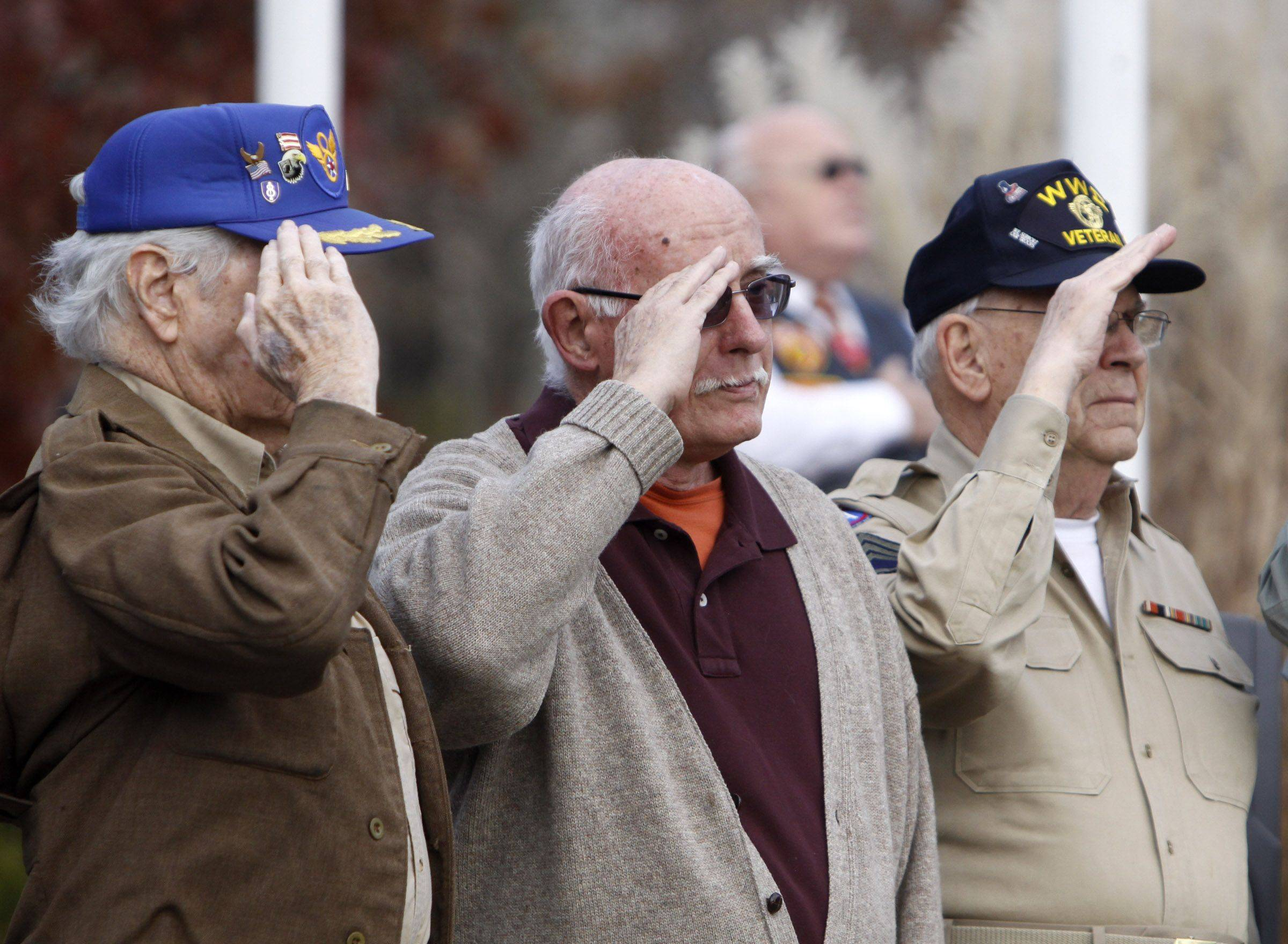 Past veterans stood at attention as the gun salute honored military men and women that have fallen since last year during Naperville's observance of Veterans Day Thursday at Veterans Park in Naperville.