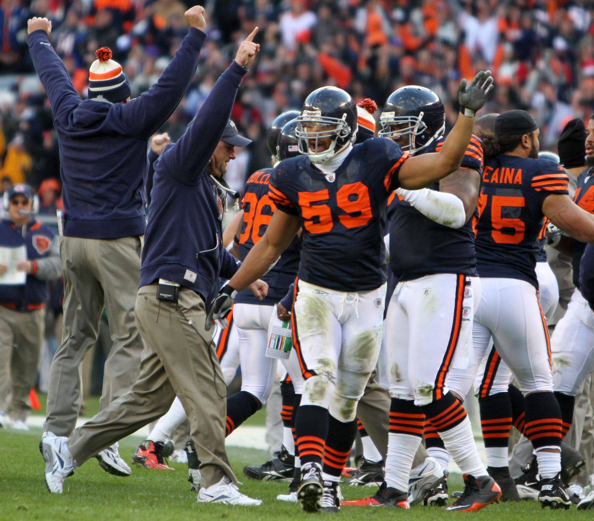 Chicago Bears celebrate recovering a fumble by Lance Briggs against Minnesota Vikings in the second half.
