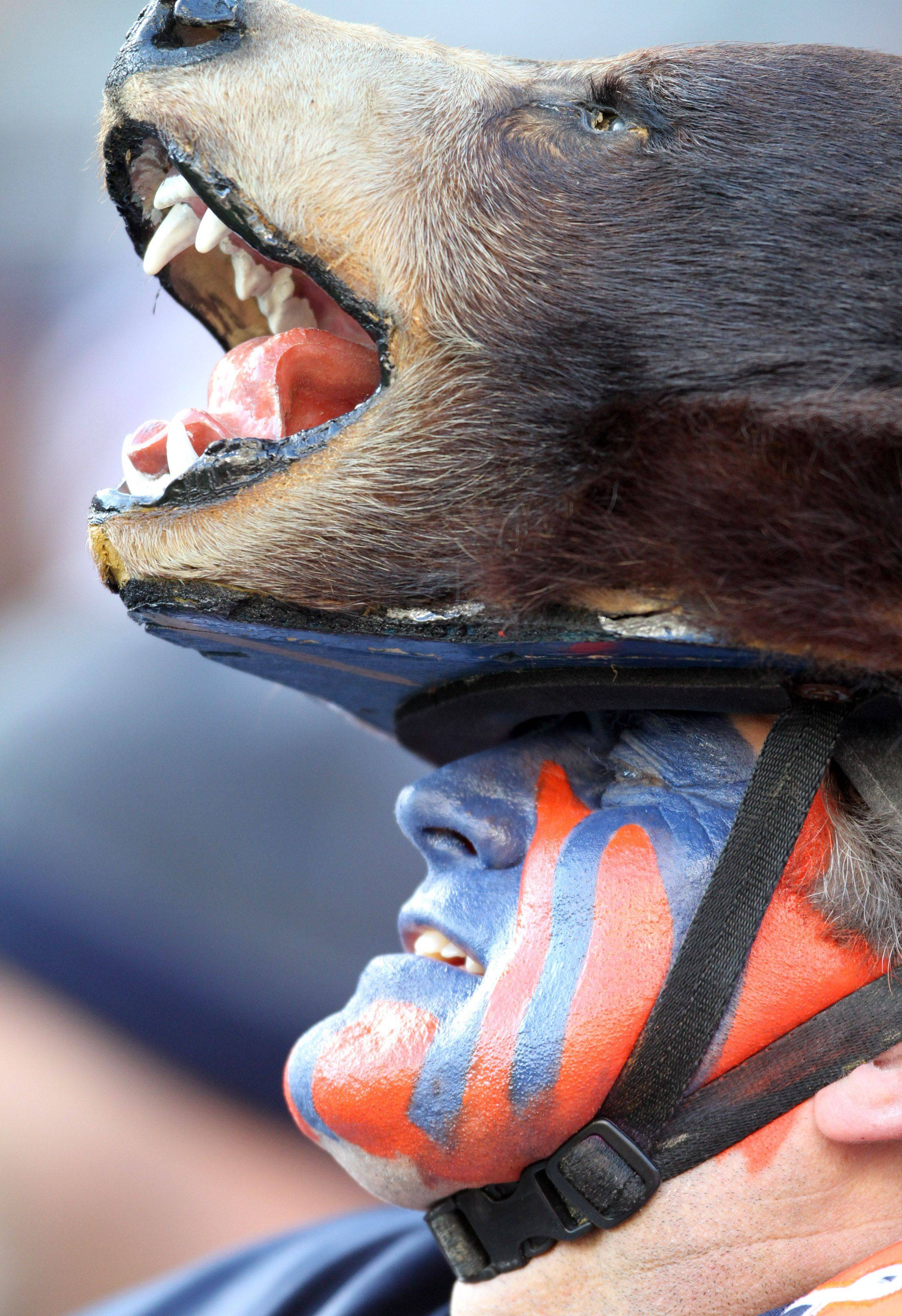 A Chicago Bears fan dresses up for the game at Soldier Field.