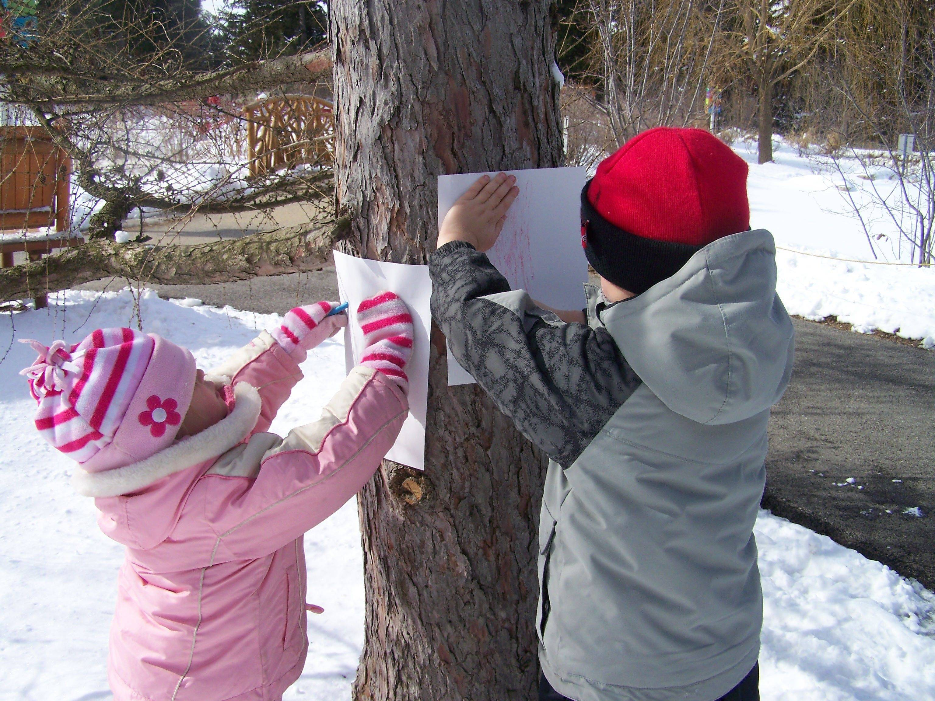 Youngsters make tree bark tracings during a winter nature hike at the Morton Arboretum's Children's Garden, which recently celebrated its fifth birthday.