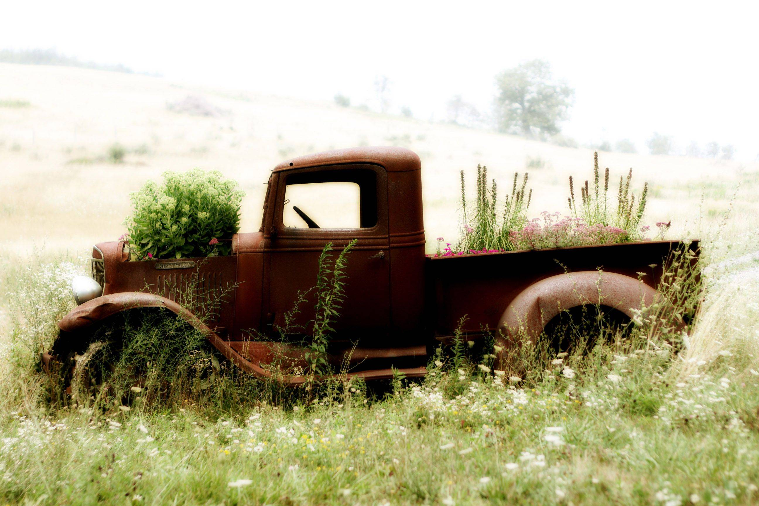 I drove my motorcycle to Washington D.C. late this past summer and took a wrong turn in the mountains of West Virginia, but it was worth having to backtrack once I stumbled onto this old forgotten pickup, alone in a field.