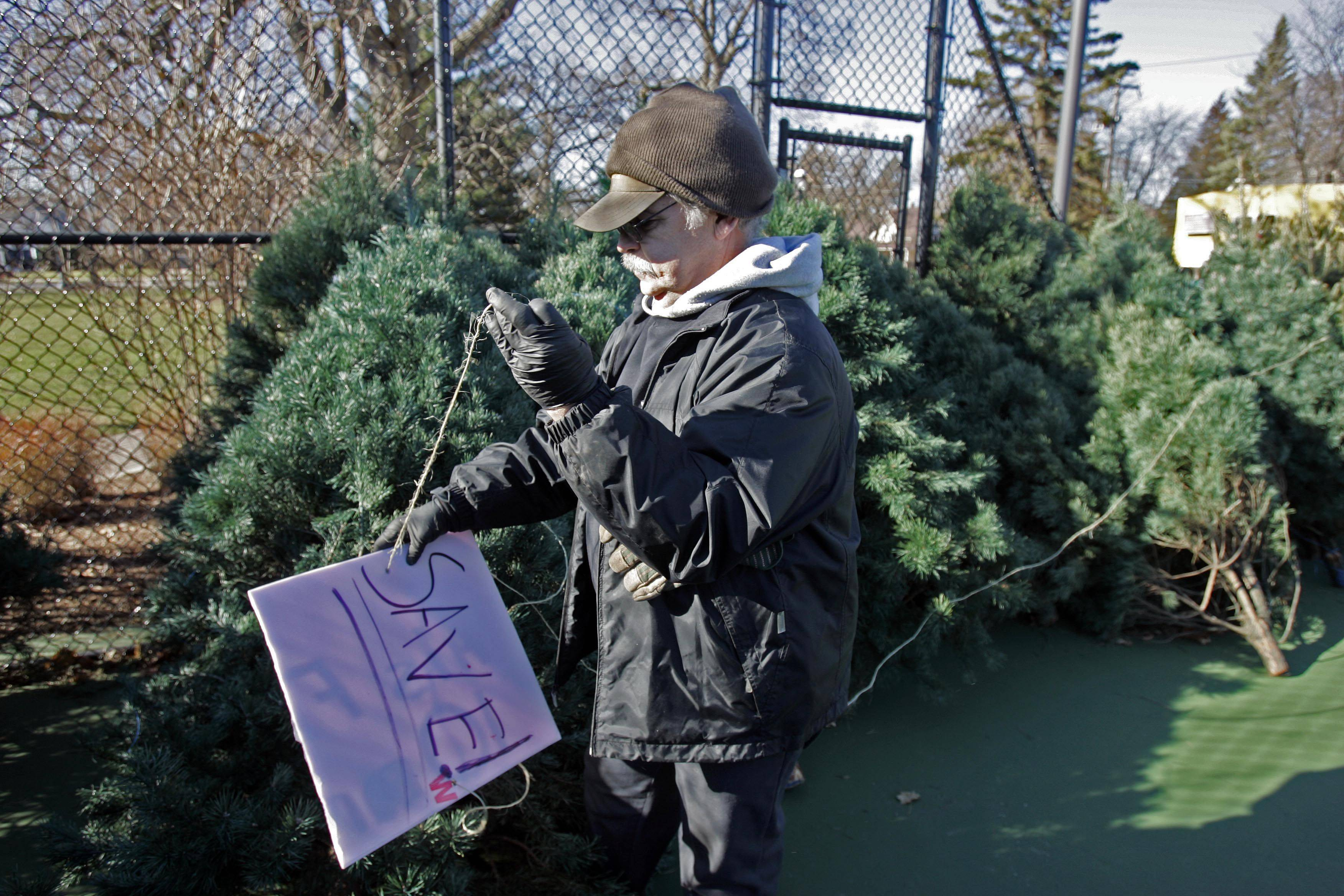 John Cichowski labels save signs on a few of the trees at the West Dundee and Carpentersville Lions Christmas tree sale at Grafelman Park in West Dundee. They will be open Thursdays and Fridays from 6-8 P.M. and Saturday and Sunday from 10 A.M. to 6 P.M. The trees are being saved for the Festival of Trees next Friday.
