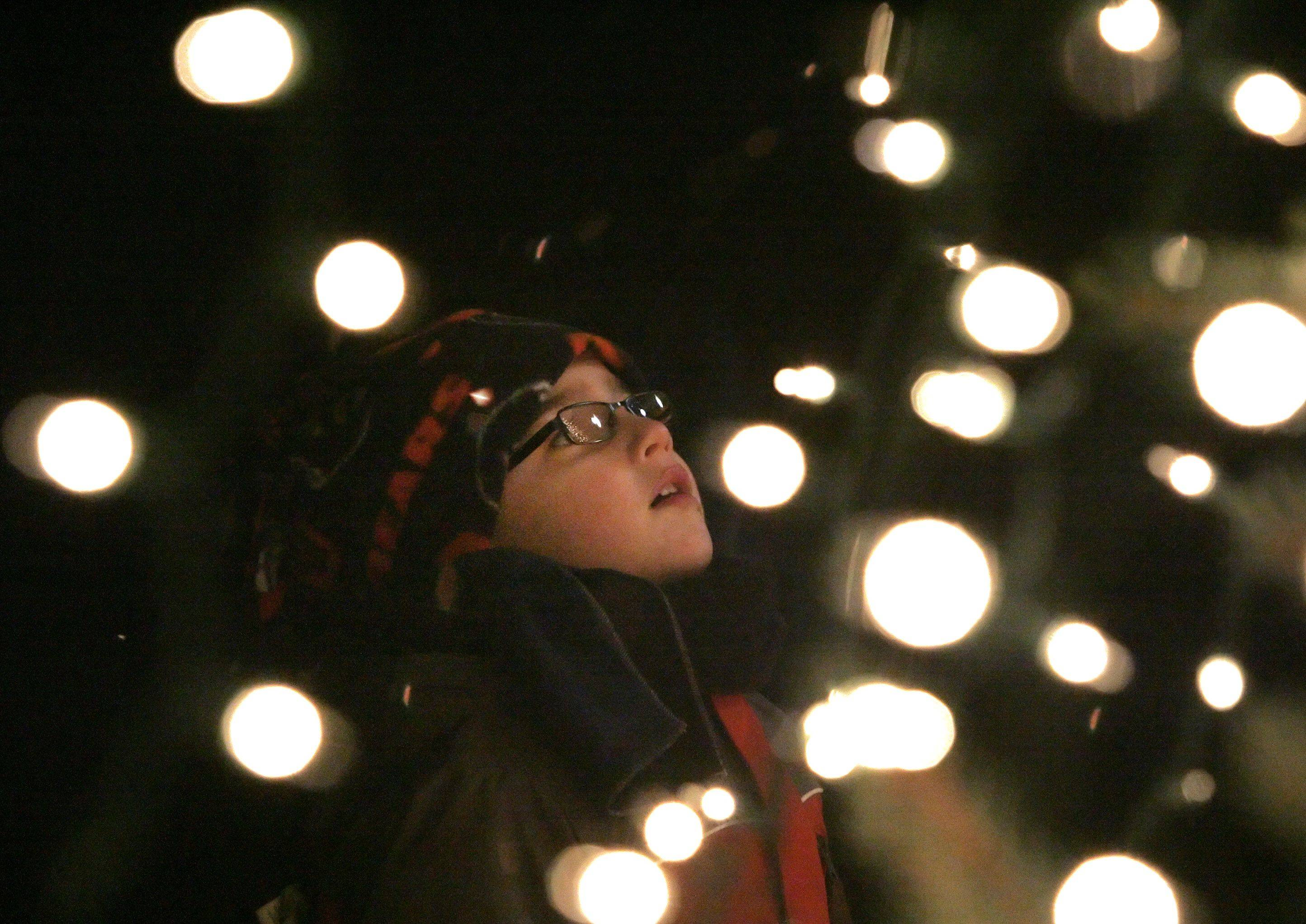 Aidan Rogalski, 5 of Lindenhurst, looks up at the Christmas tree in downtown Grayslake during the official tree lighting ceremony Friday night.