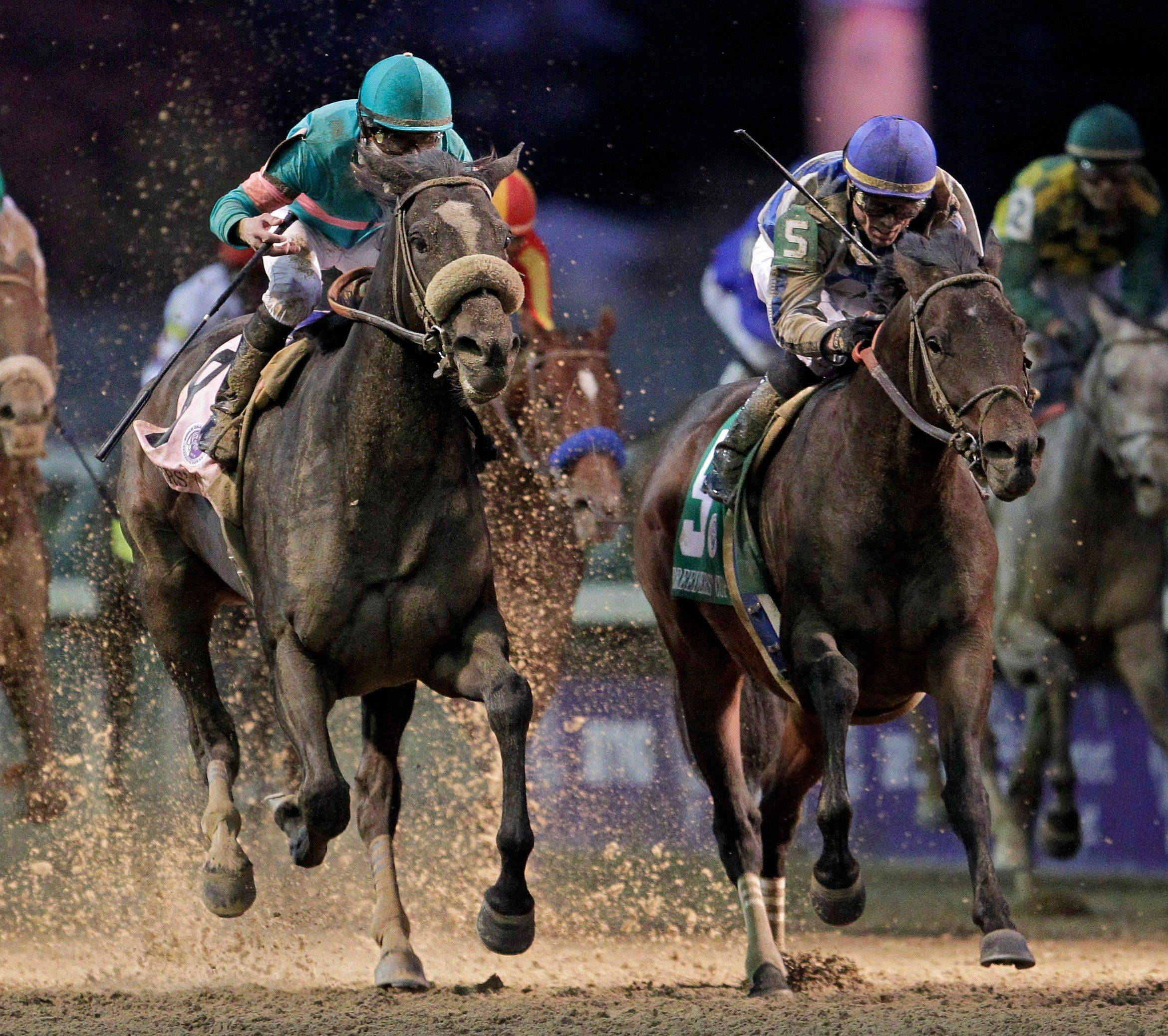 Garrett Gomez, right, rides Blame to victory during the Breeders' Cup Classic on Nov. 6. Zenyatta, at left, finished second.
