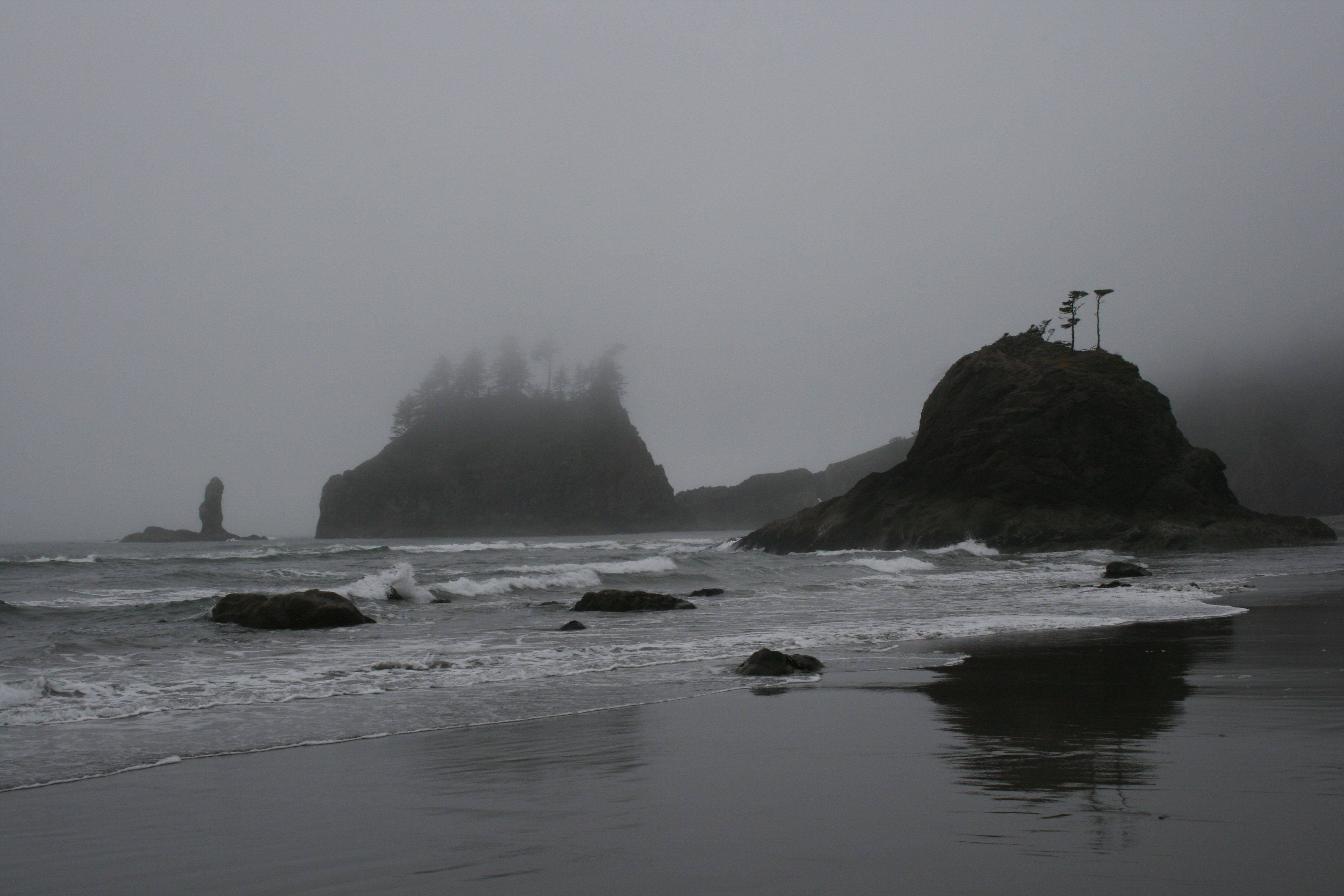 This photo was taking while walking on the beach in LaPush Washington last July. The fog hugged the shore all day for the whole time we were there. The tall cliffs were truly spectacular!