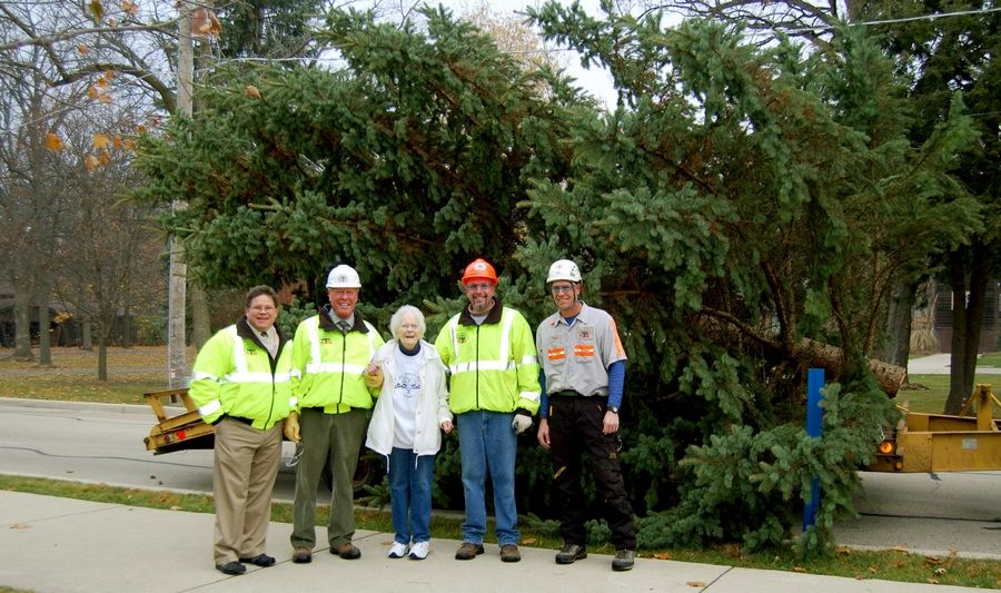 Lifelong West Chicago resident Jean Day, center, donated her 35-foot spruce to be city's holiday tree. Kramer Tree Specialists' Rick Thomas, from left, president Joe Kramer, Jeff Kramer and Todd Kramer were on hand to remove the tree from her yard.