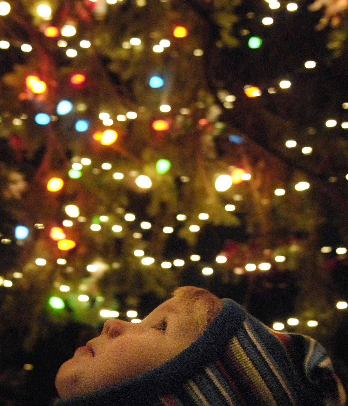 2-year-old CAmeron Ziegler of Geneva leans his head back while being held up by his mom Jody to look at the lights on the Geneva Christmas tree during the annual holiday festivities downtown Friday night.