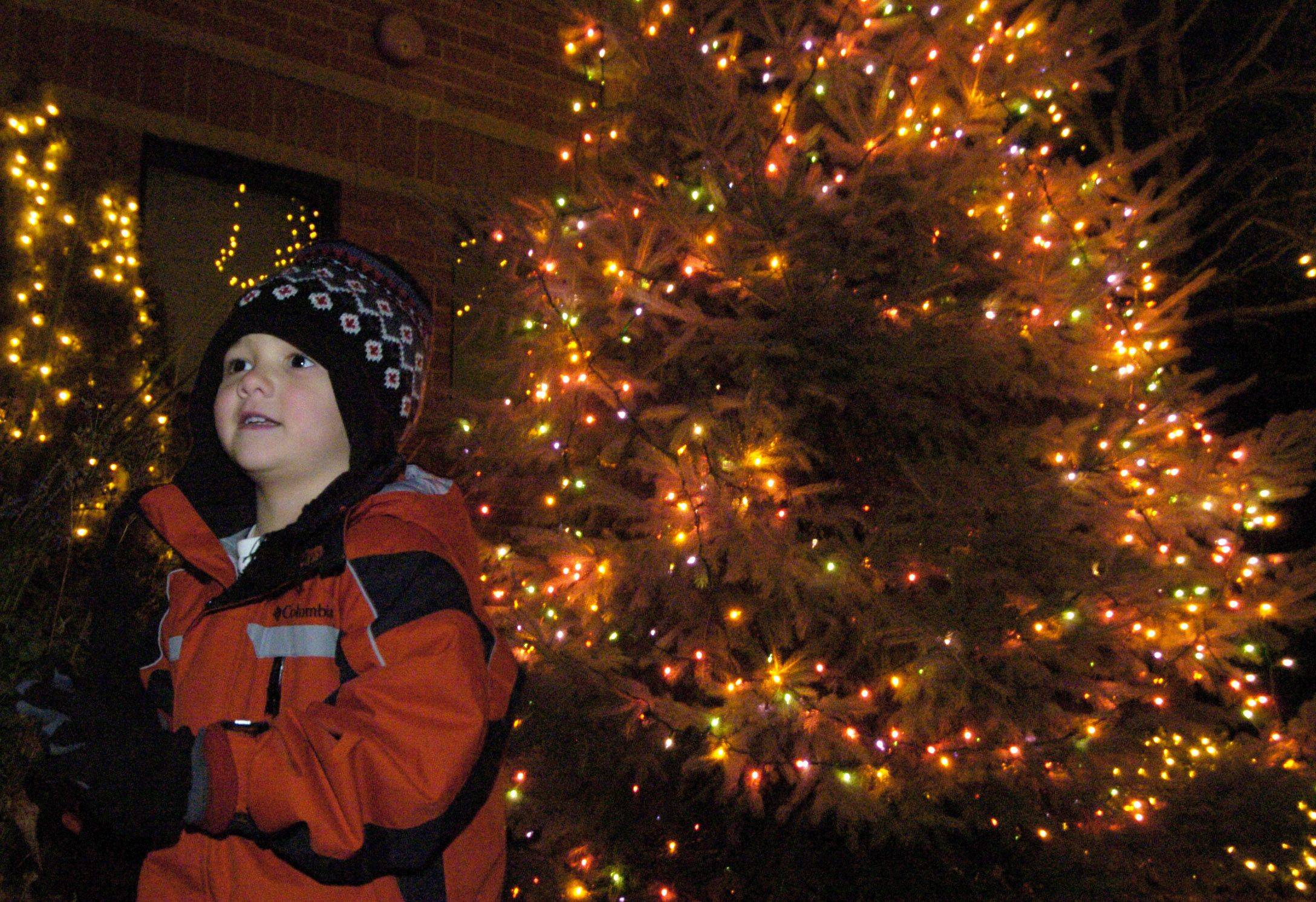 Dayton Diaz, 4, of Buffalo Grove attends Saturday evening's tree lighting ceremony in Prospect Heights.