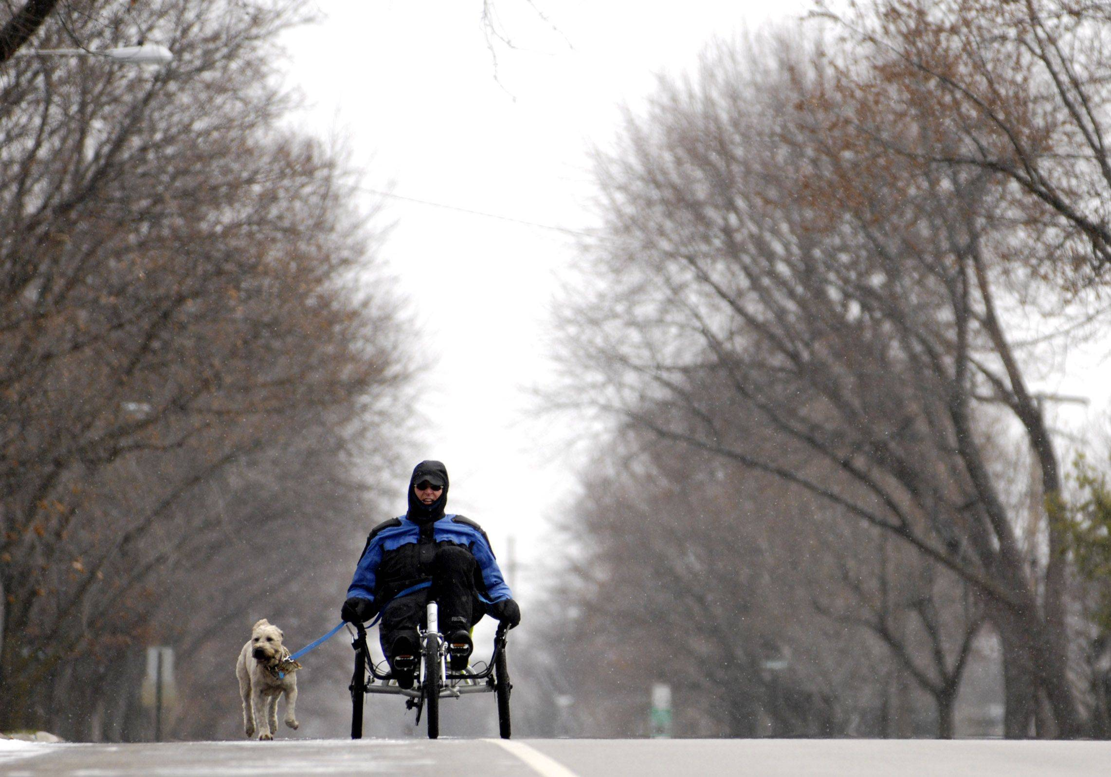 Greg Ignatius of Mount Prospect takes his dog Houdini along with him for a bike ride on Lincoln Street on a cold start to December.