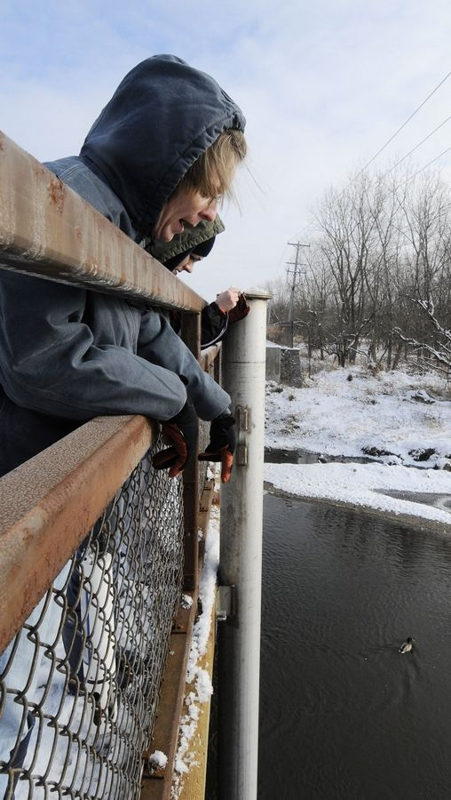 Downers Grove Sanitary District Lab Supervisor Mary Dressel, left, and lab analyst Malwina Serpa examine the location in the East Branch of the DuPage River where they will install an instrument in the metal tube, to measure the amount of salt in the river during the winter.
