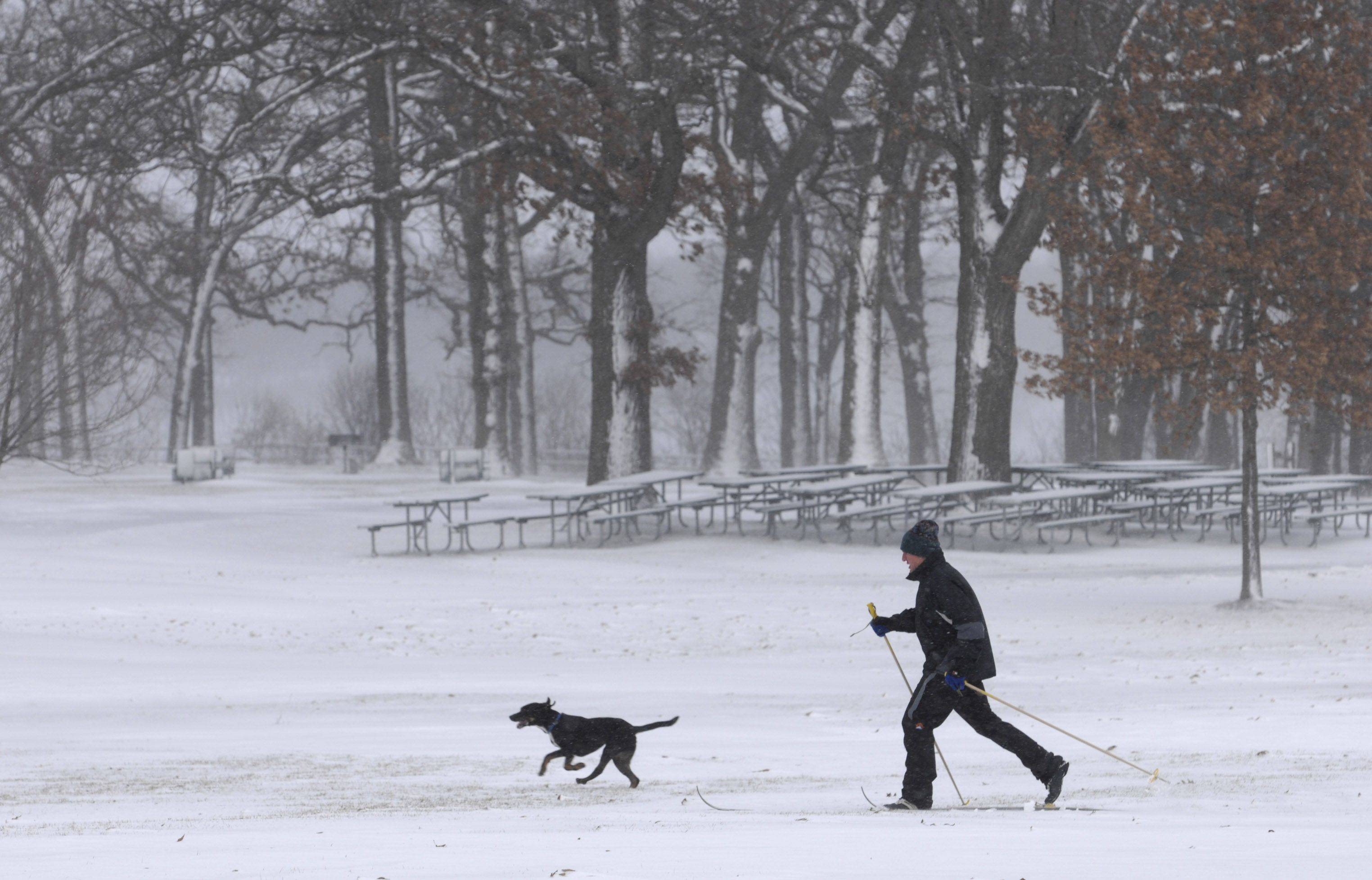 A man and his dog brave the cold temperatures, high winds and blowing snow to do cross country skiing at Henry J. Paulus park in Lake Zurich.