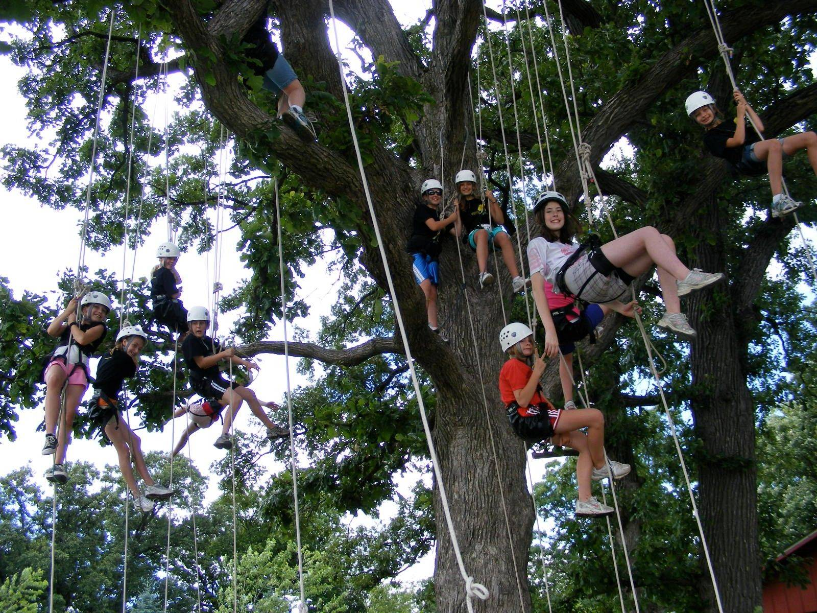 Naperville students will test their endurance and fears in a variety of exercises including tree climbing at Frankfort's Camp Manitoqua.