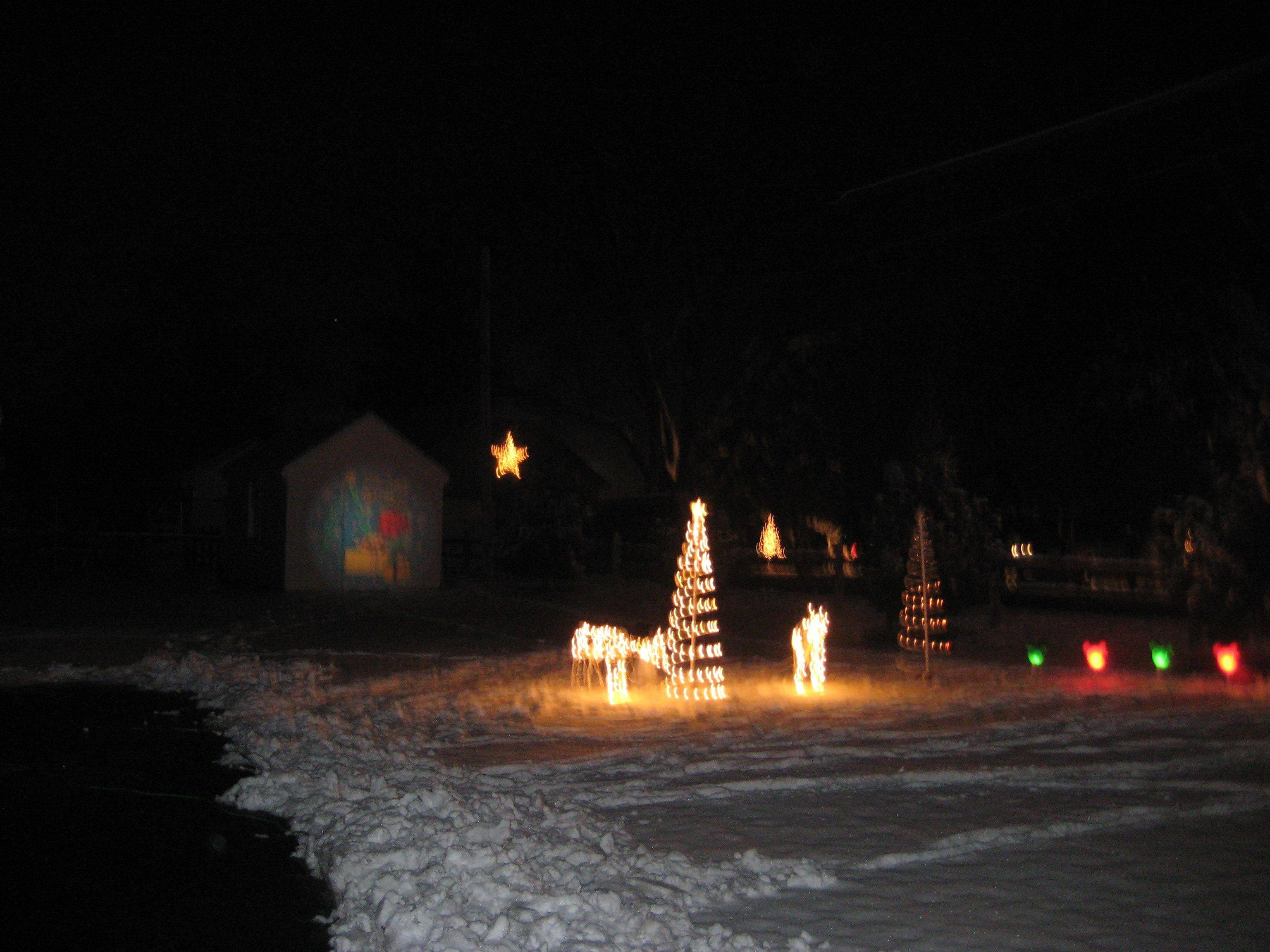 Illuminated reindeer graze in Jon Schaus' yard at 510 N. Arlington Heights Road in Itasca.