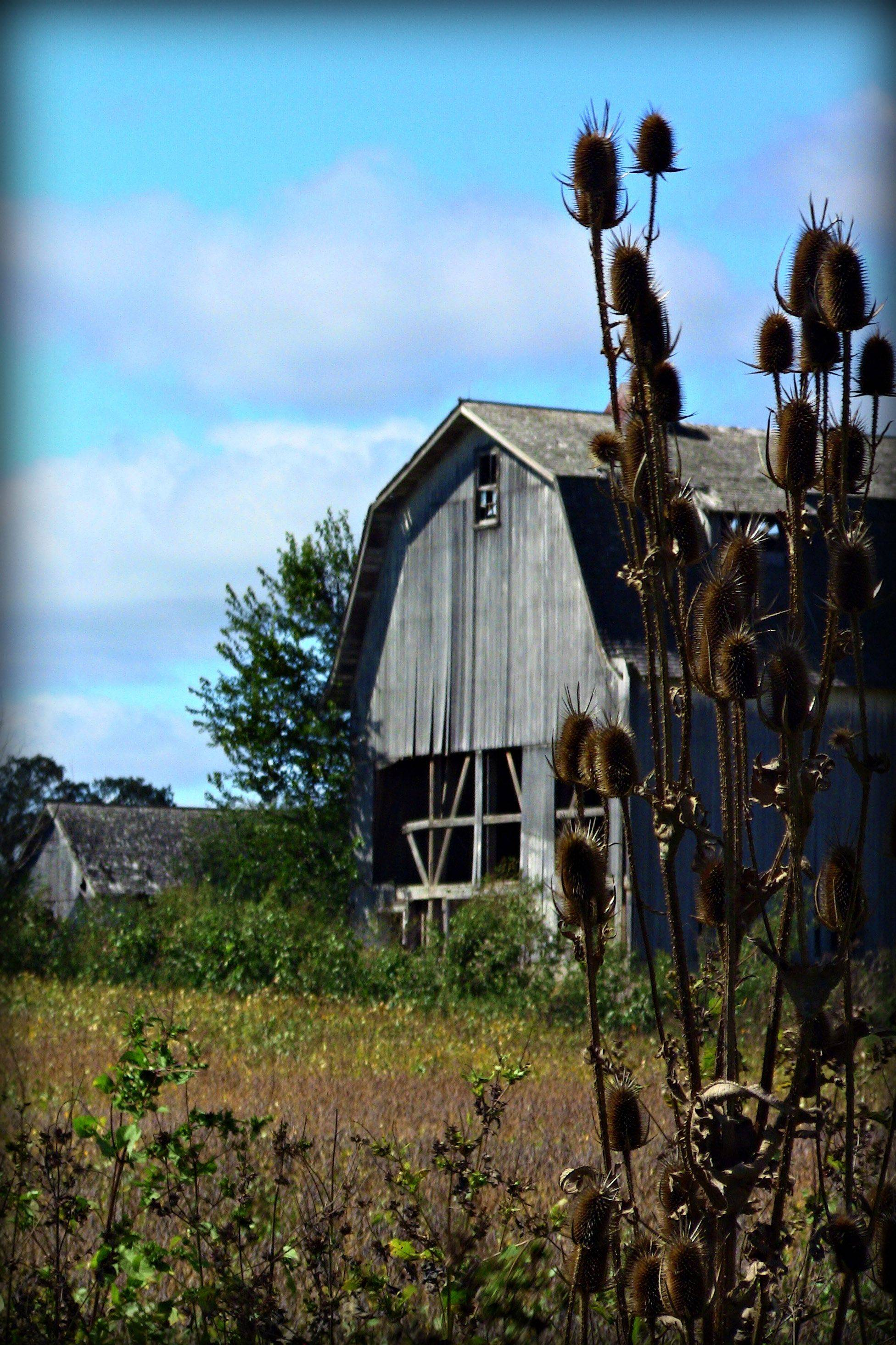 An old farm house on Route 120 in Round Lake this past fall.