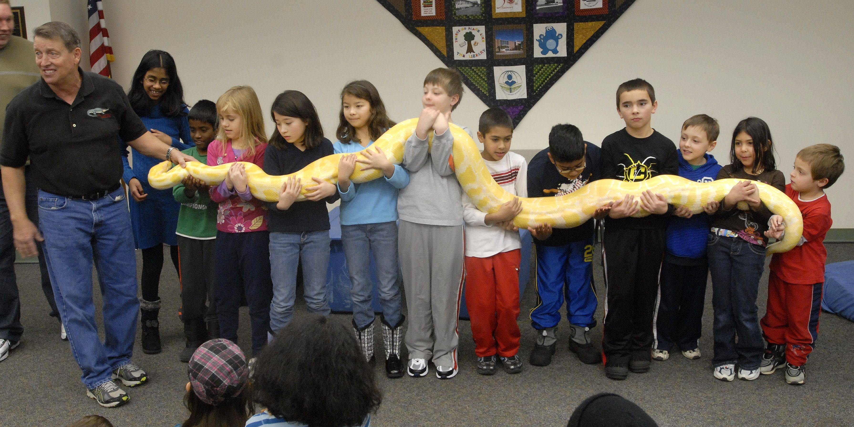 Kids hold a albino Burmese python Wednesday during a presentation by reptile expert Jim Nesci at Indian Trails Public Library in Wheeling.